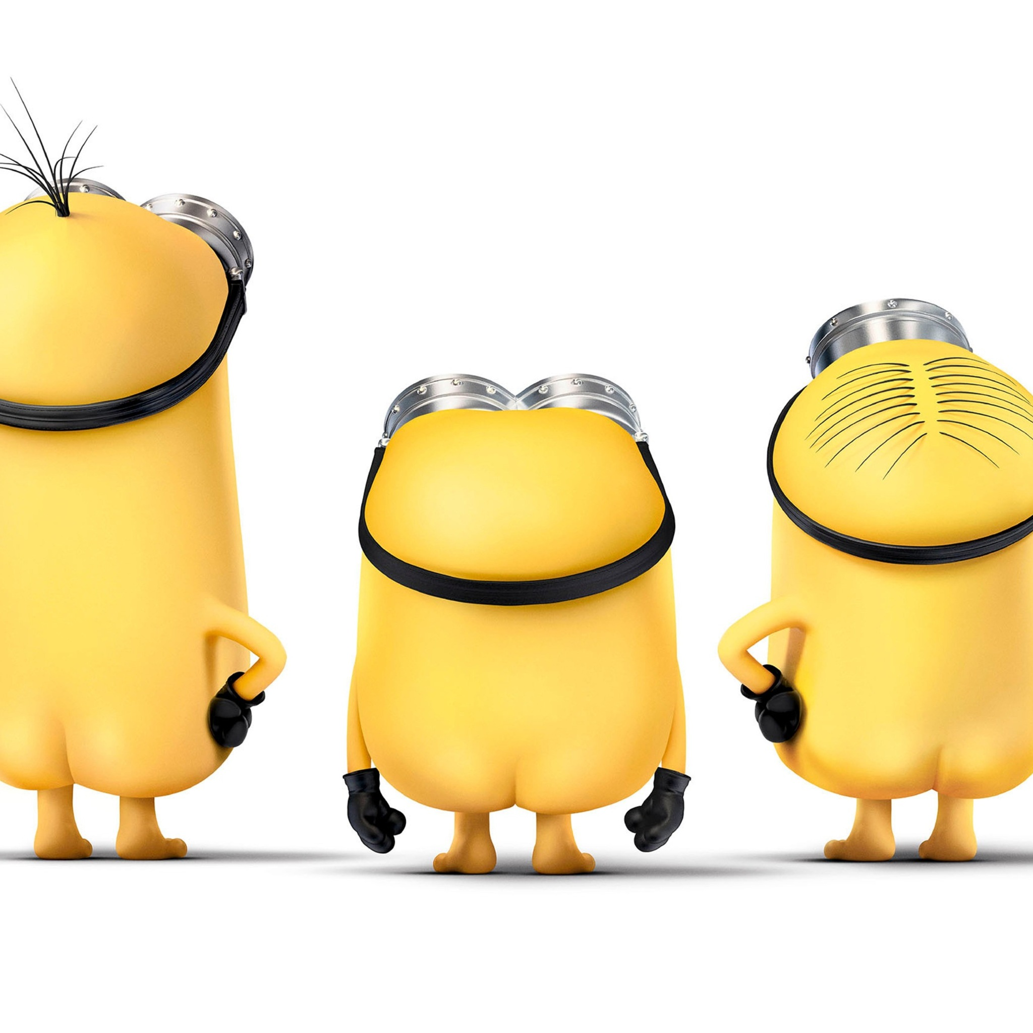 2048x2048 minions funny ipad air hd 4k wallpapers, images