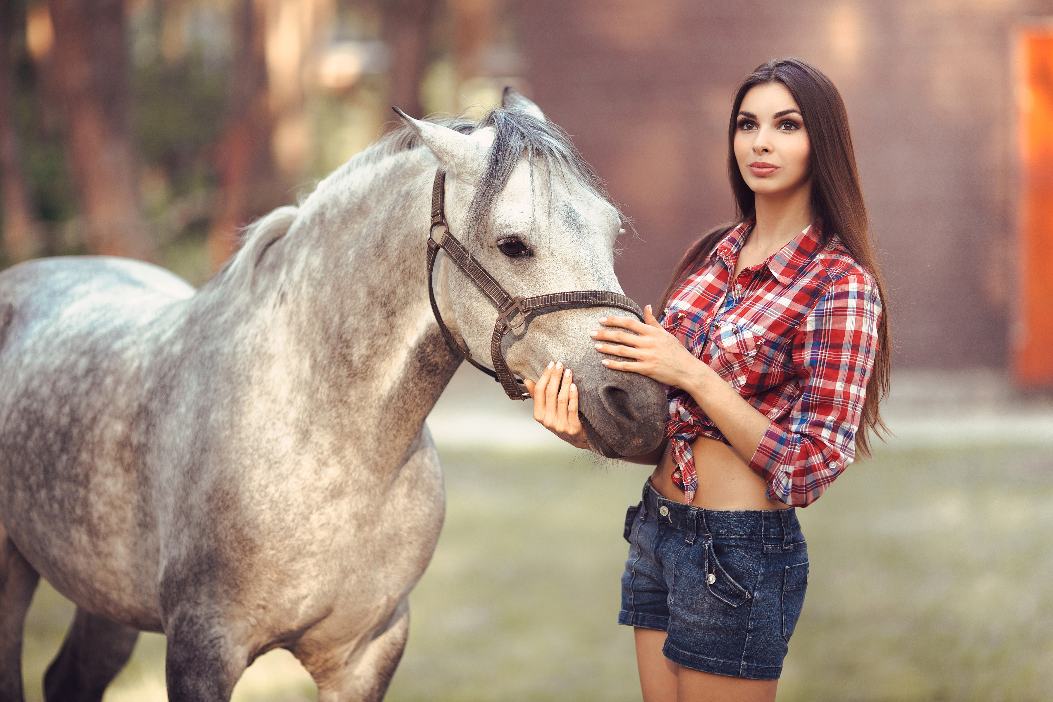 1366X768 Beautiful Girl With Horse 4K 1366X768 Resolution -2523