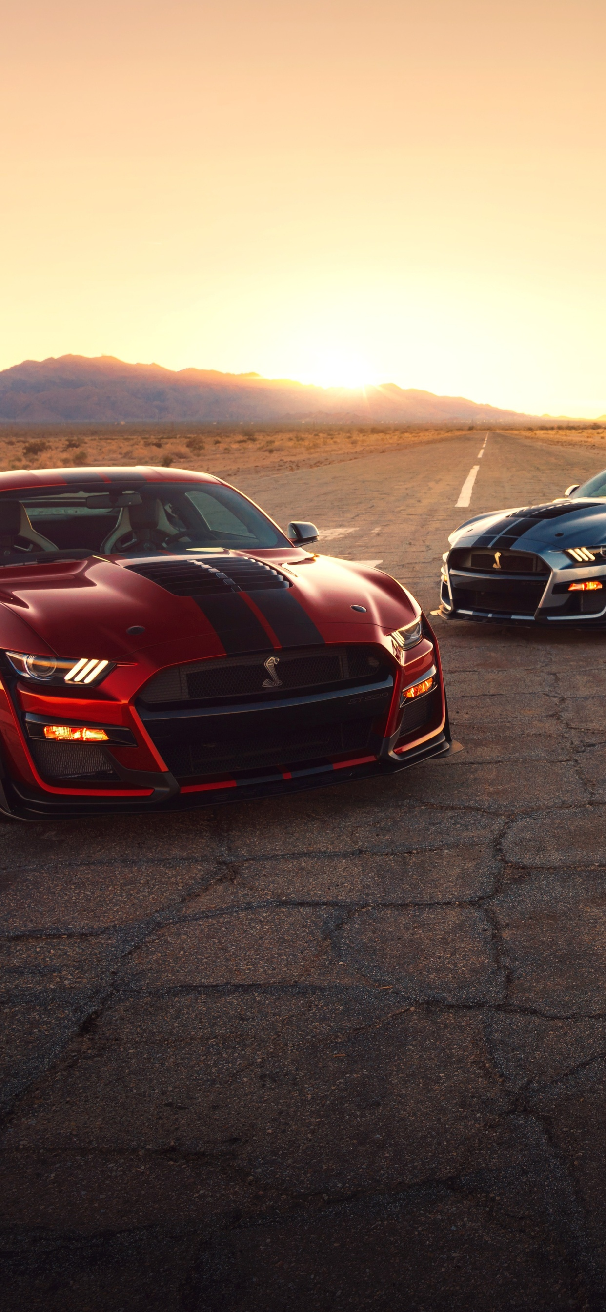 1242x2688 Ford Mustang Shelby GT500 2020 Iphone XS MAX HD ...