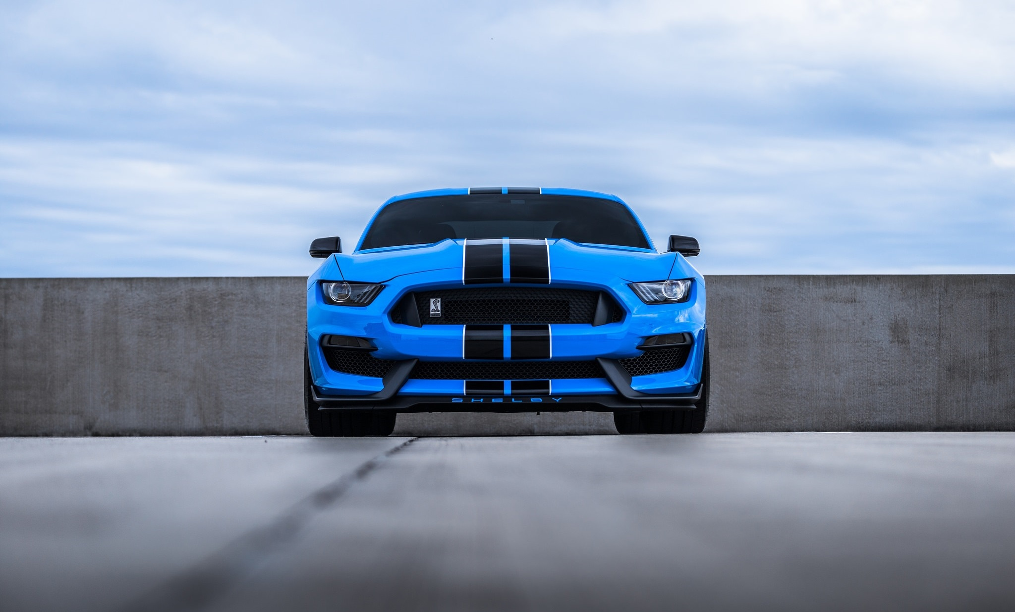 Ford Mustang Shelby Muscle Car, HD Cars, 4k Wallpapers