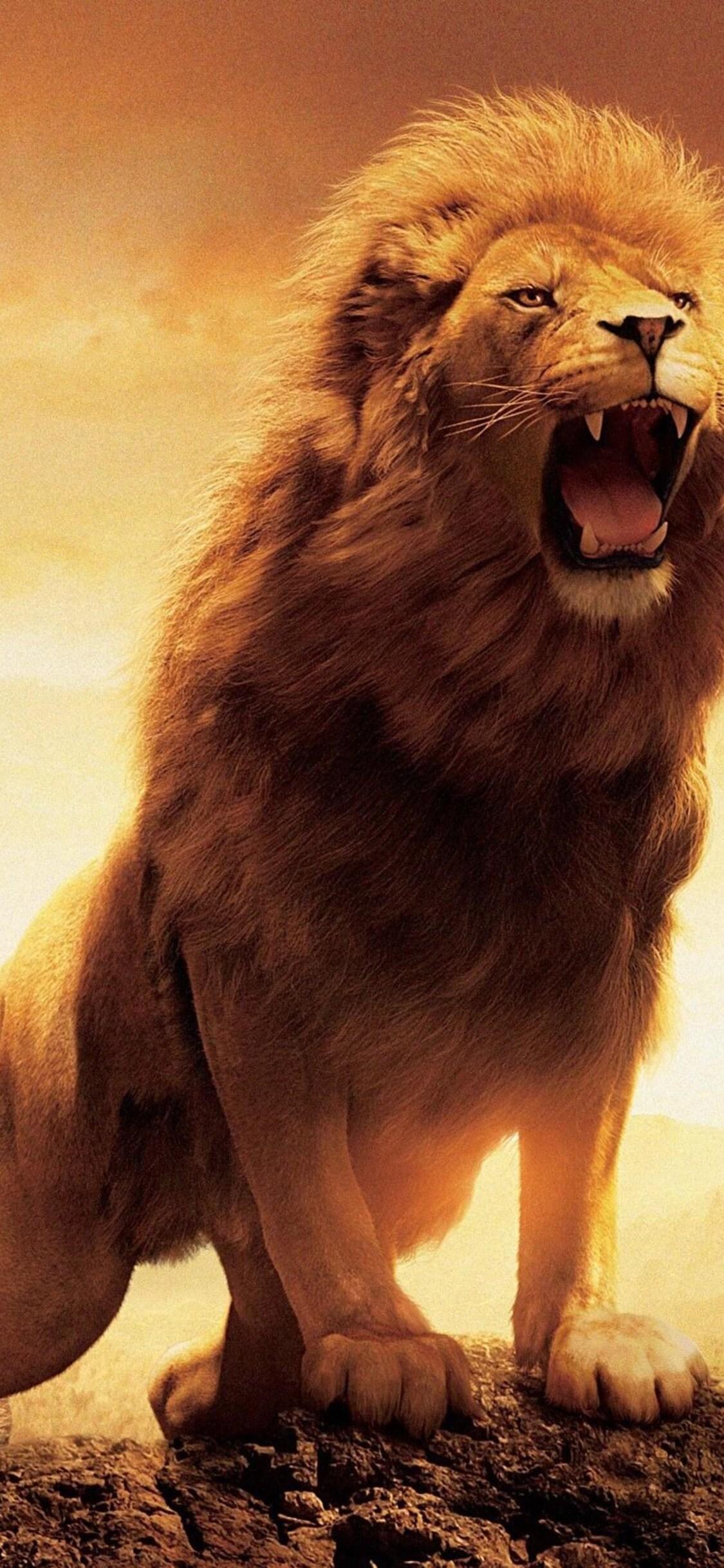 1125x2436 Narnia Lion Iphone XS,Iphone 10,Iphone X HD 4k ...