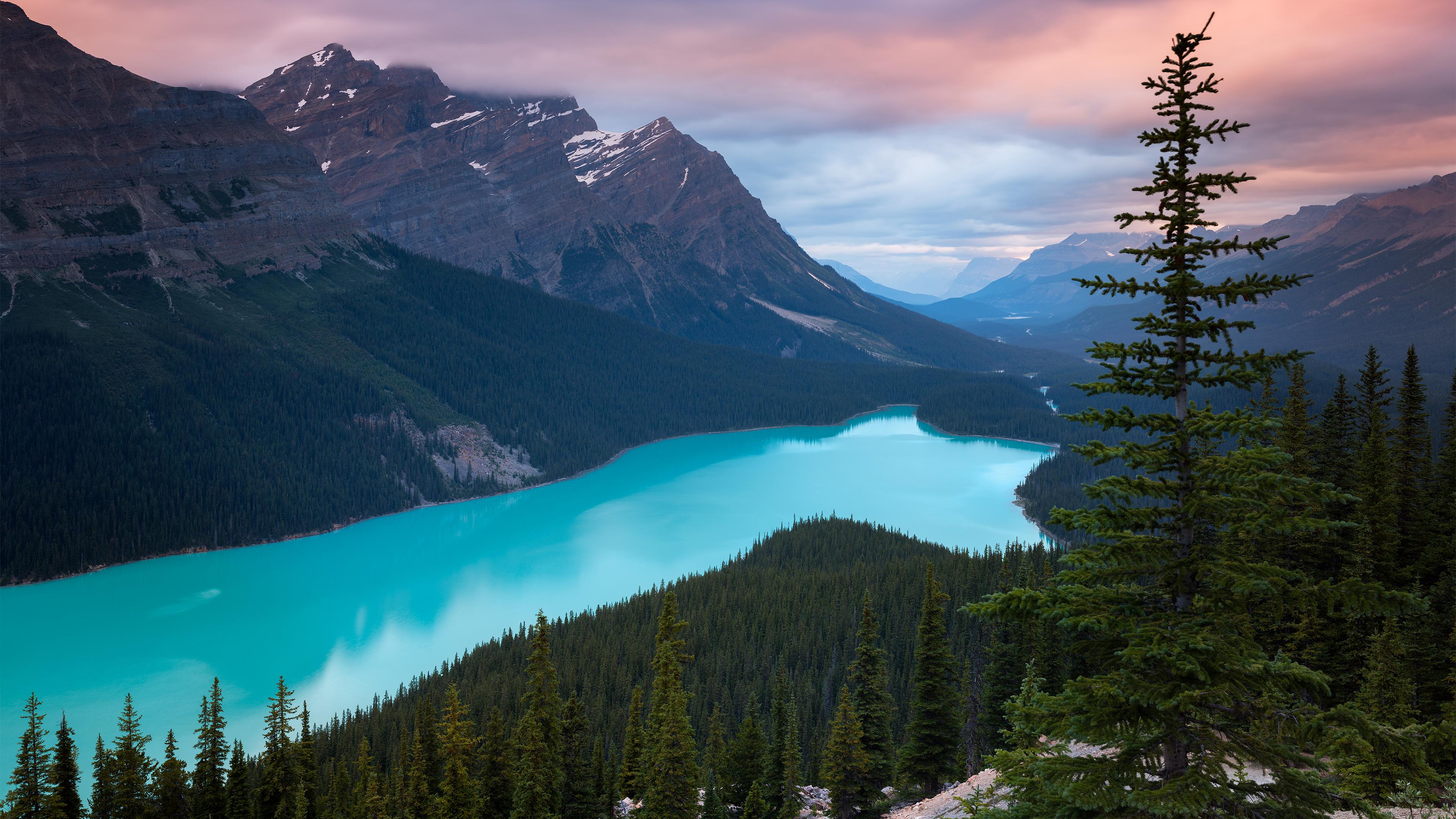 2560x1080 Peyto Lake Canada Mountains 4k 2560x1080 ...