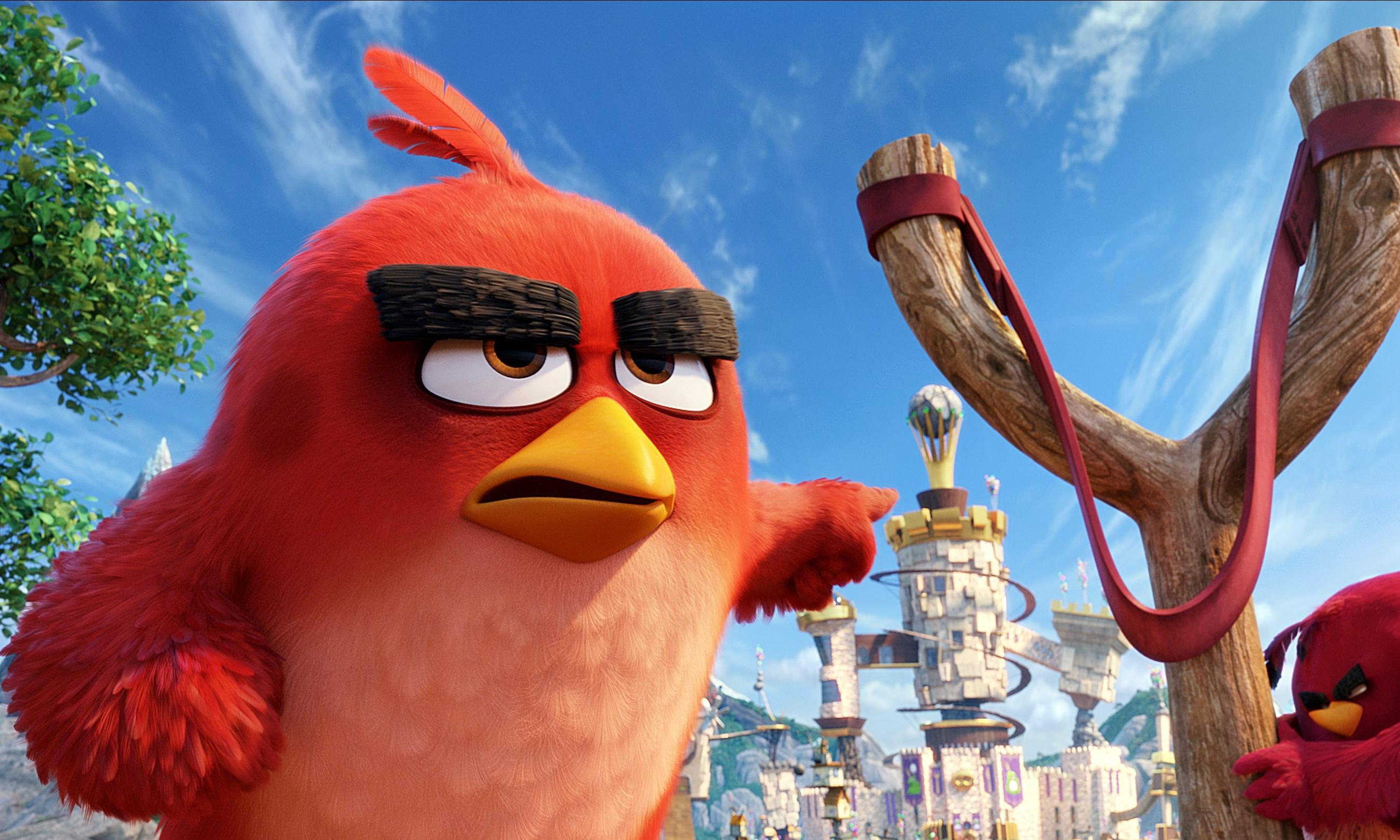 The Angry Birds Movie Hd Wallpaper