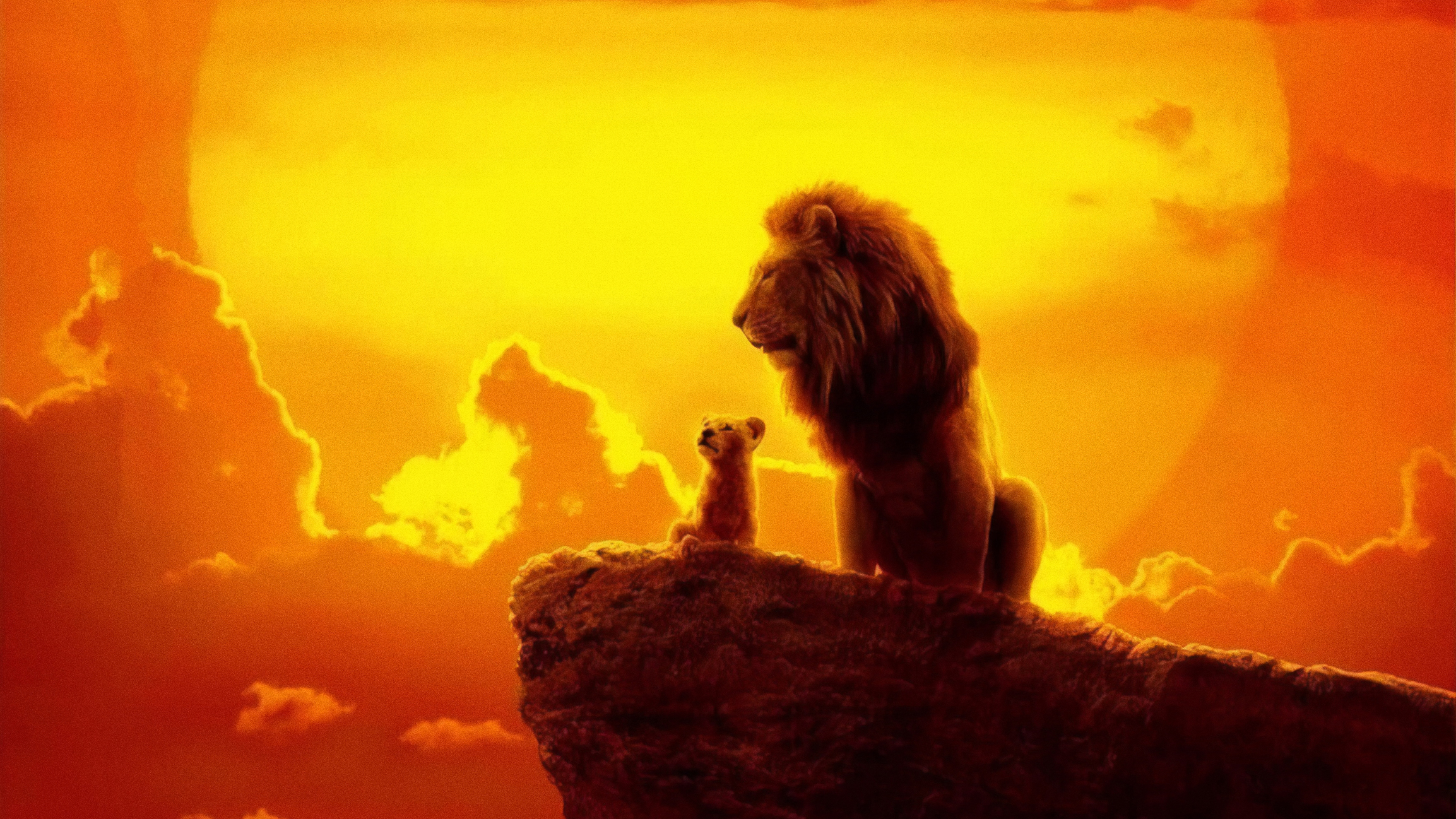 the lion king 2019 4k  hd movies  4k wallpapers  images