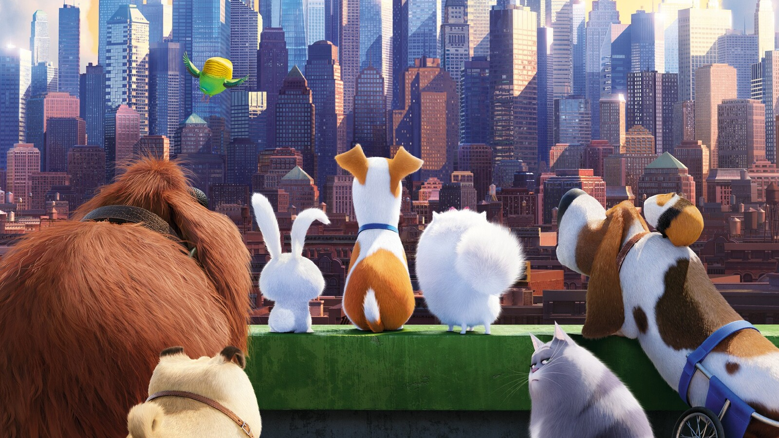 The Secret Life Of Pets Wallpaper: 1600x900 The Secrete Life Of Pets Movie 1600x900