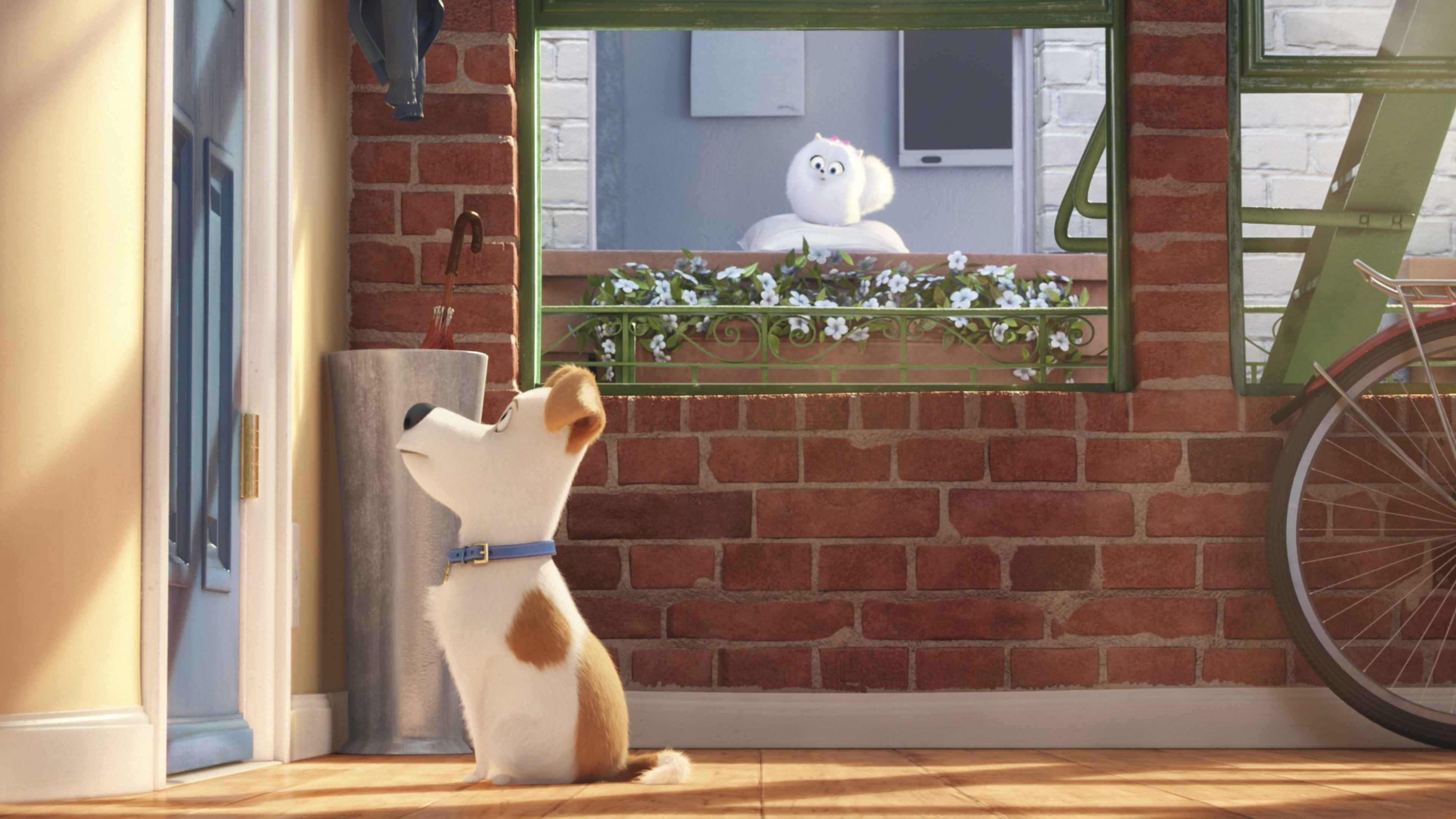 240x320 The Secrete Life Of Pets Movie Main Character
