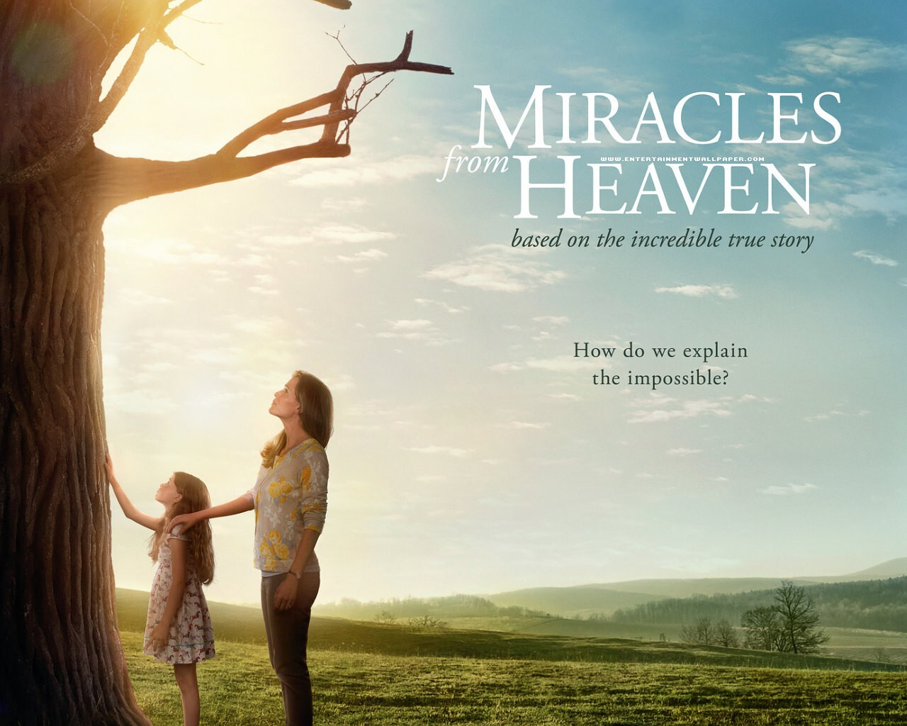 2016-miracles-from-heaven.jpg