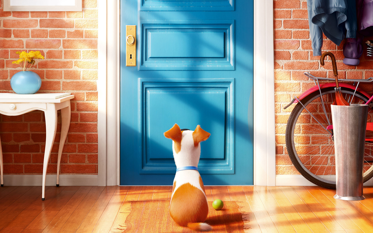 2016-the-secrete-life-of-pets.jpg