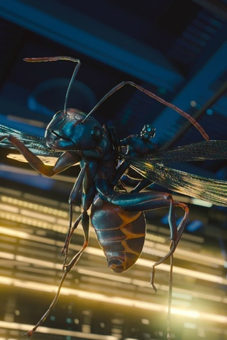 2018-ant-man-and-the-wasp-movie-4k-9t.jpg