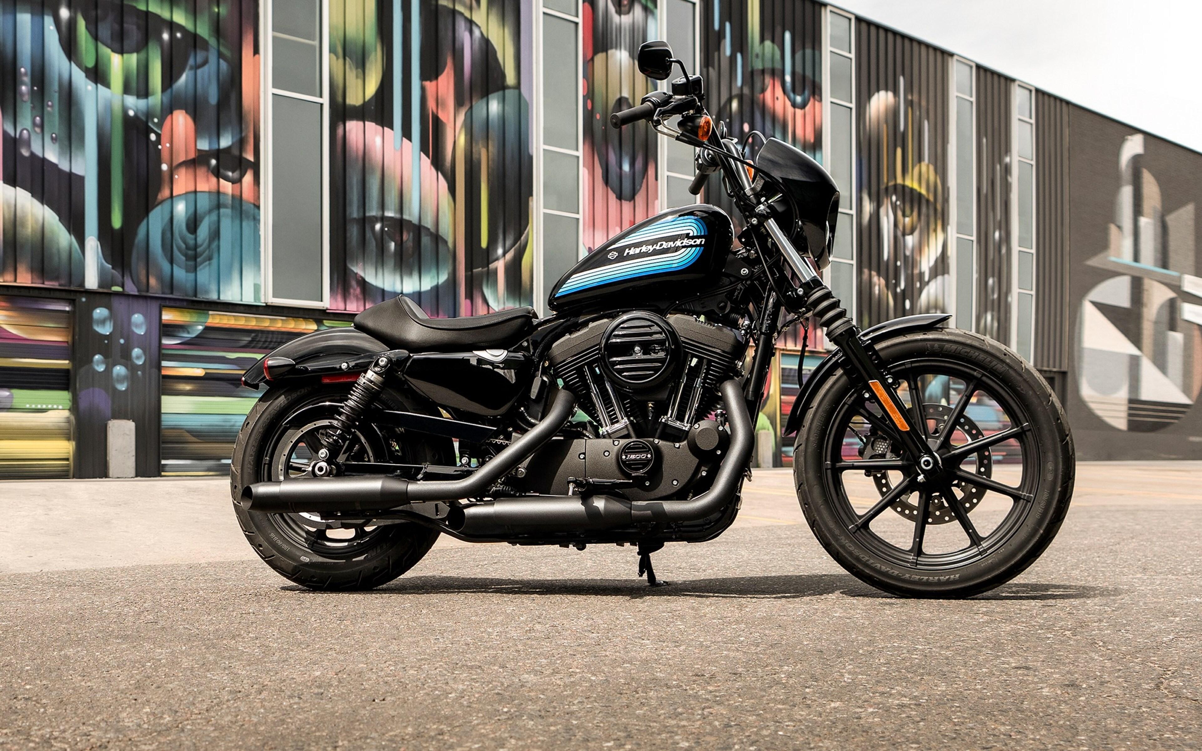 3840x2400 2019 Harley Davidson Iron 1200 4k HD 4k