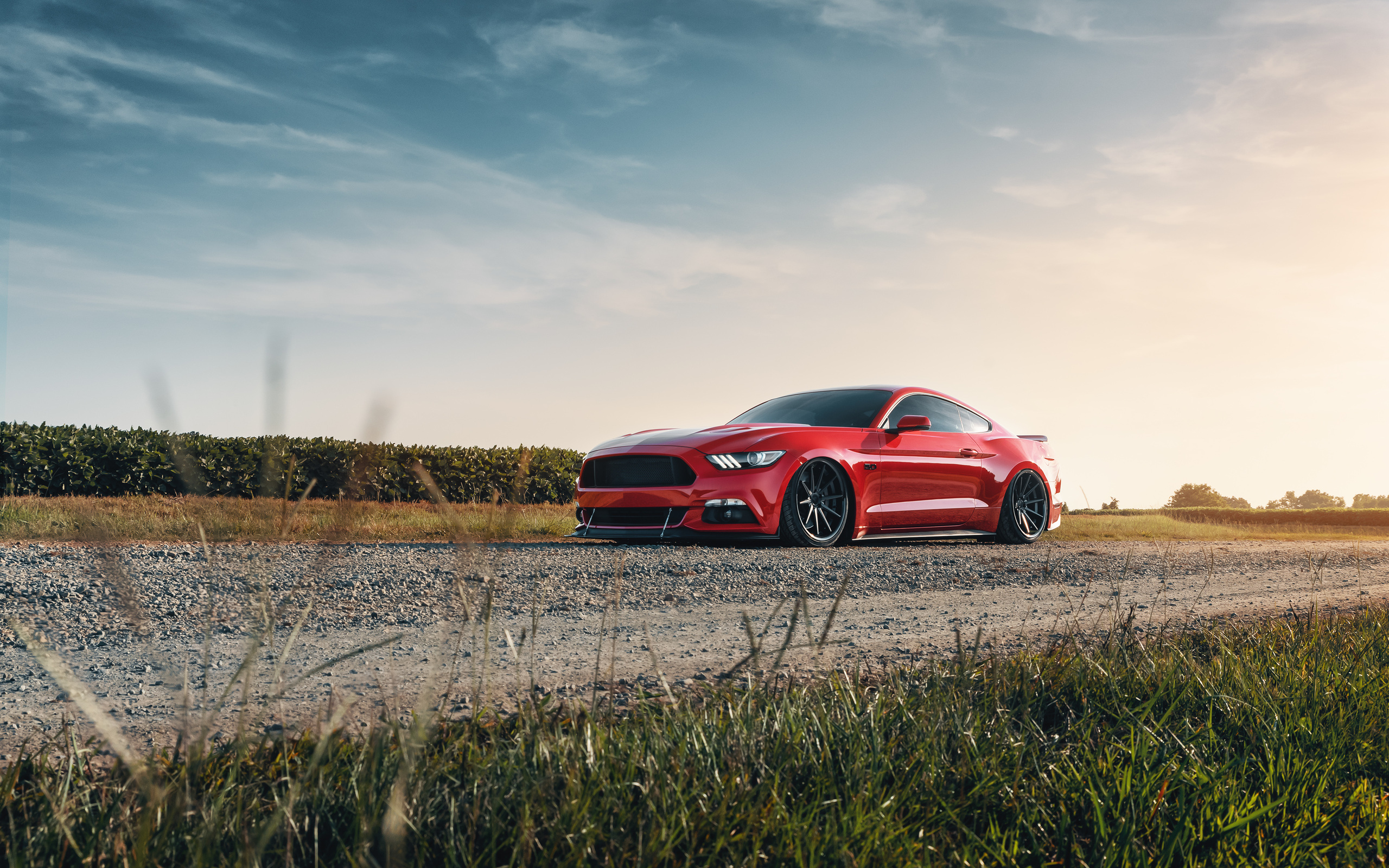 2560x1600 2021 Red Ford Mustang 4k 2560x1600 Resolution HD ...