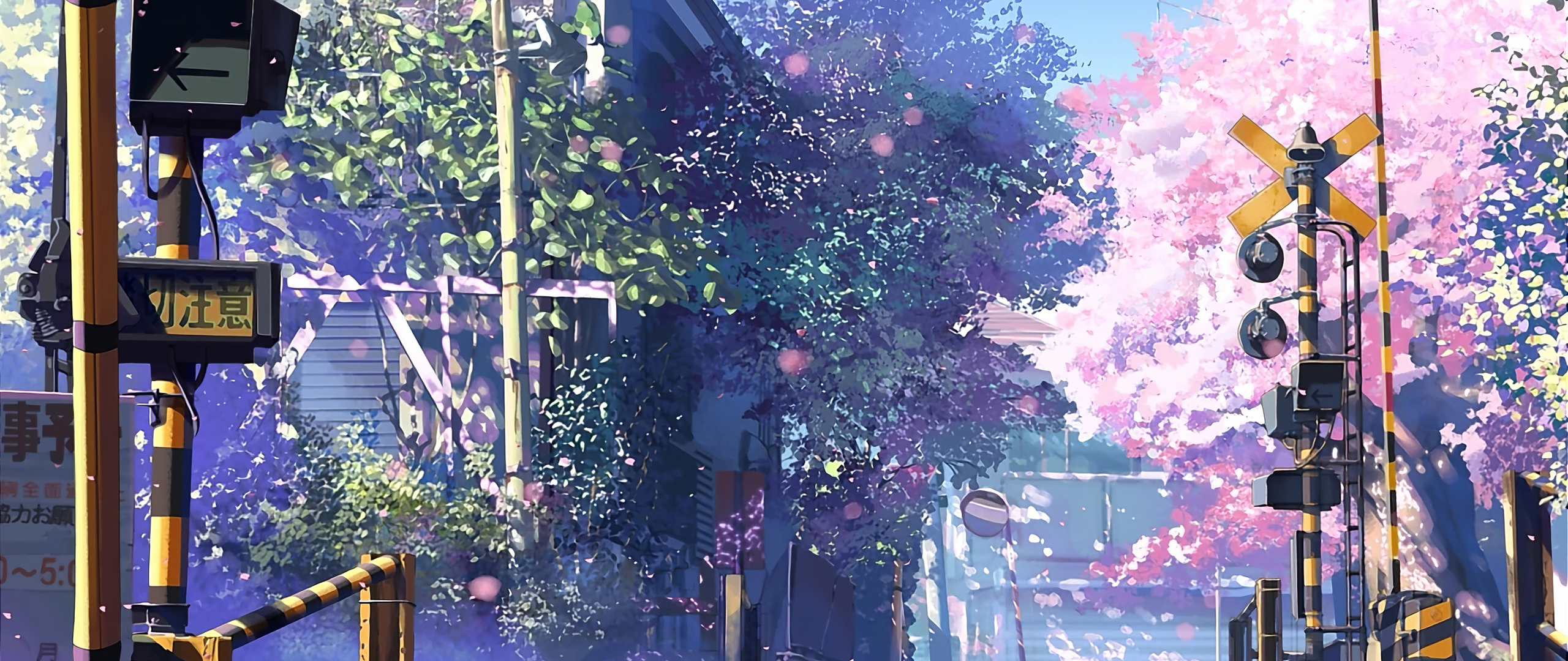 2560x1080 5 Centimeters Per Second Anime Tv Series 4k 2560x1080 Resolution Hd 4k Wallpapers Images Backgrounds Photos And Pictures