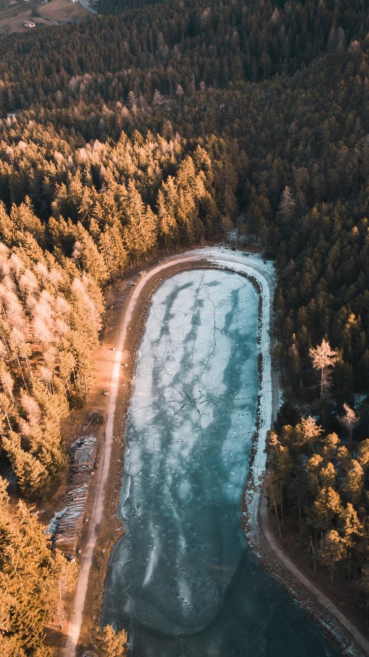 aerial-photography-trees-4k-e5.jpg