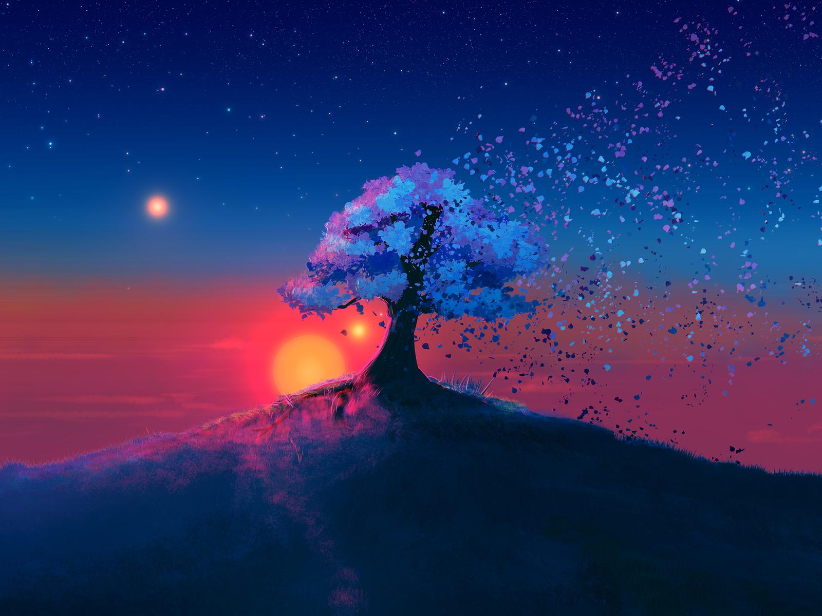 alone-tree-sunset-qe.jpg
