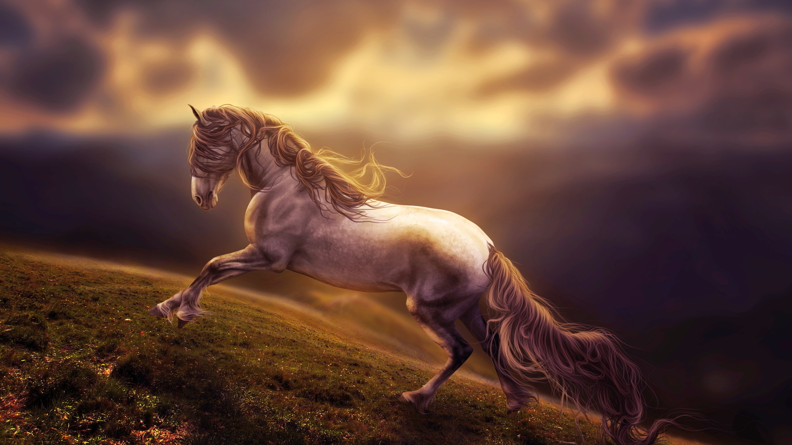 2560x1440 Amazing Horse Art 1440p Resolution Hd 4k Wallpapers Images Backgrounds Photos And Pictures