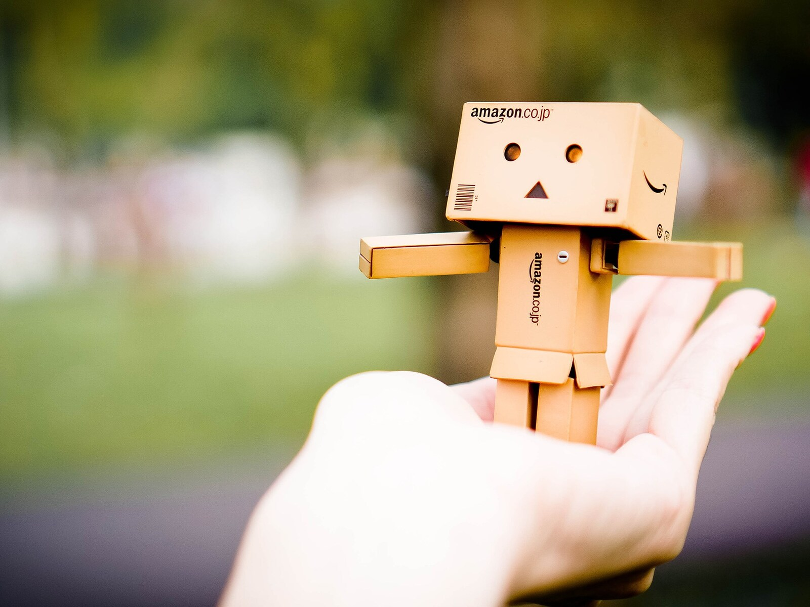amazon-danbo-4k.jpg