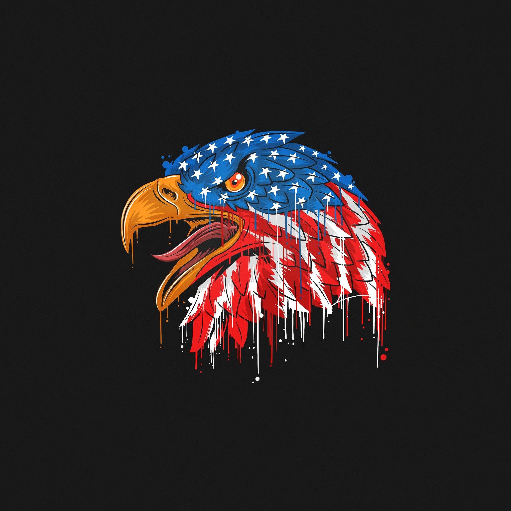 2048x2048 American Flag Eagle Minimal 4k Ipad Air Hd 4k Wallpapers