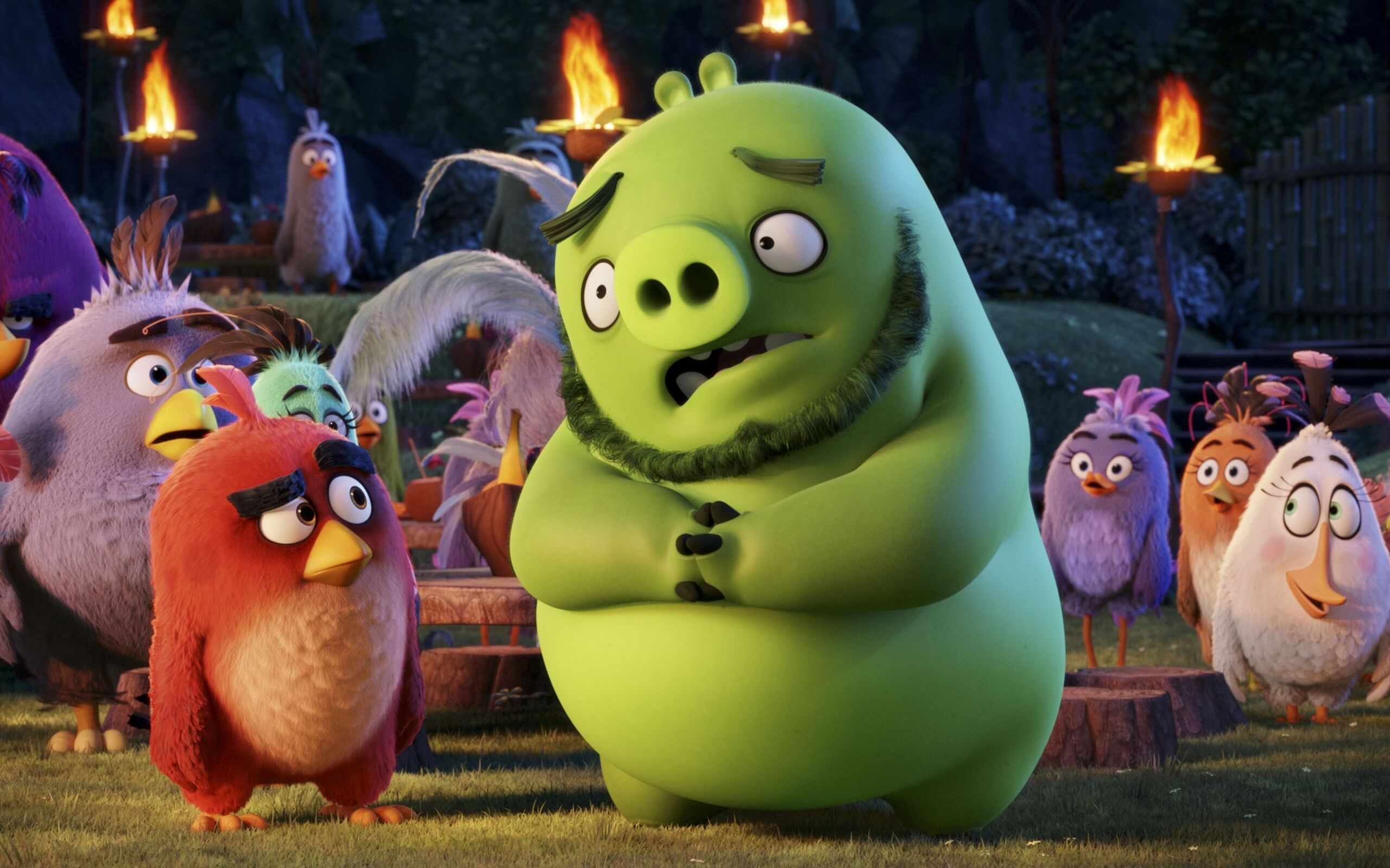2560x1600 Angry Birds Movie 2016 2560x1600 Resolution Hd 4k Wallpapers Images Backgrounds Photos And Pictures