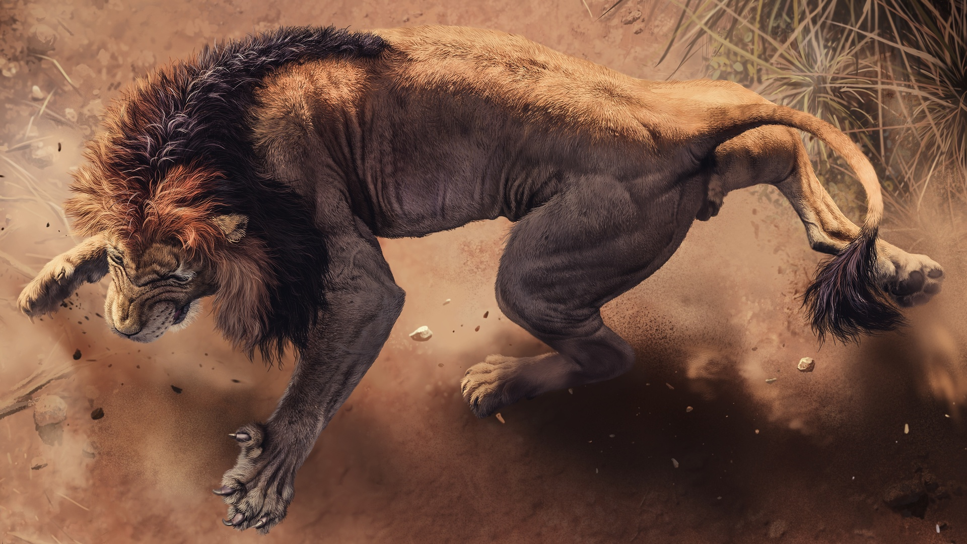 1920x1080 Angry Lion Laptop Full Hd 1080p Hd 4k Wallpapers
