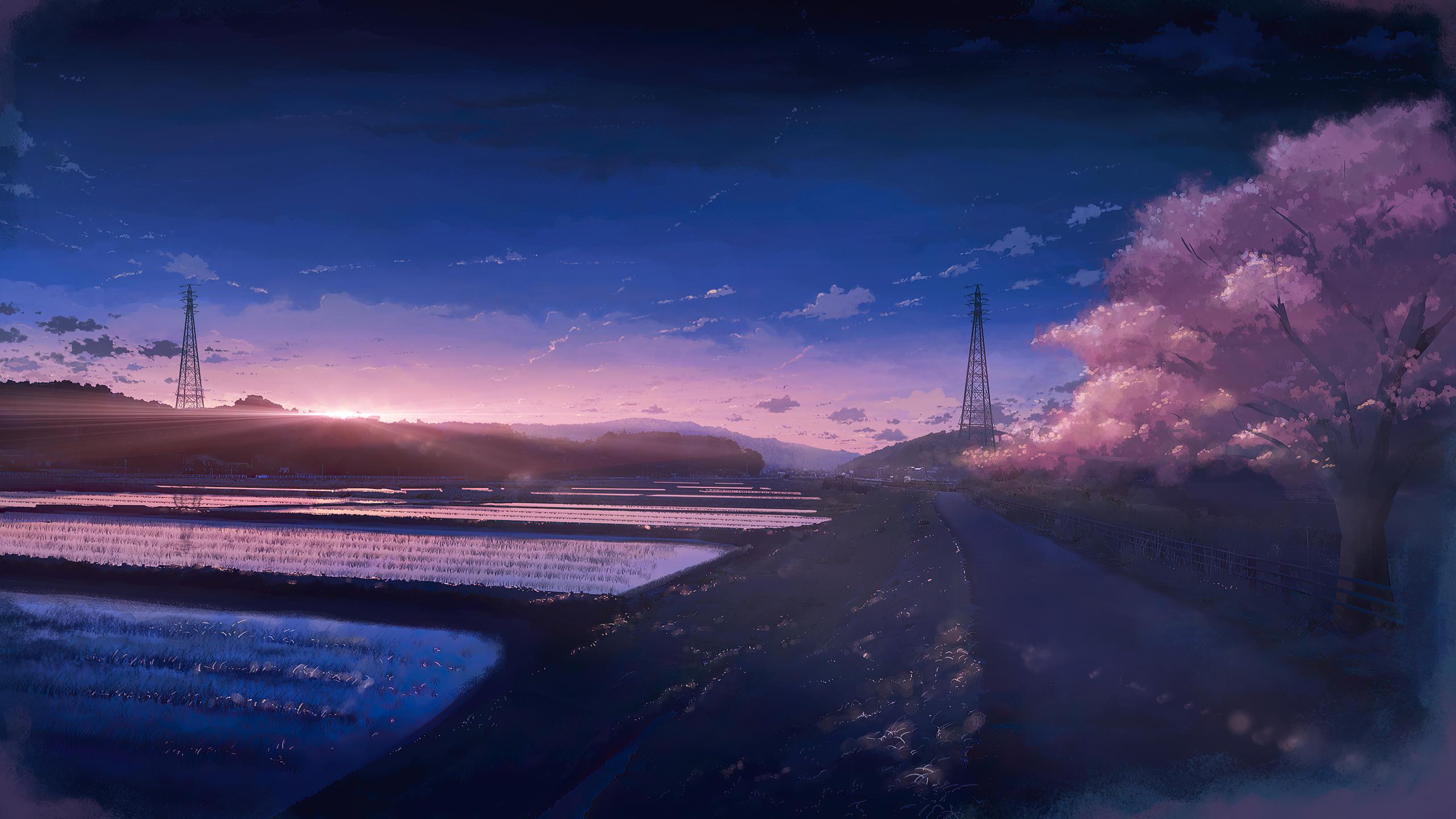 2560x1440 Anime Scenery Field 4k 1440P Resolution HD 4k ...