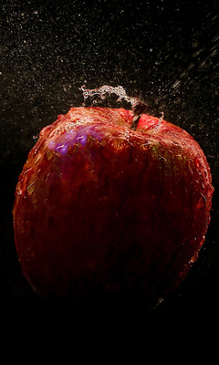 apple-time-lapse-photography-4k-tr.jpg