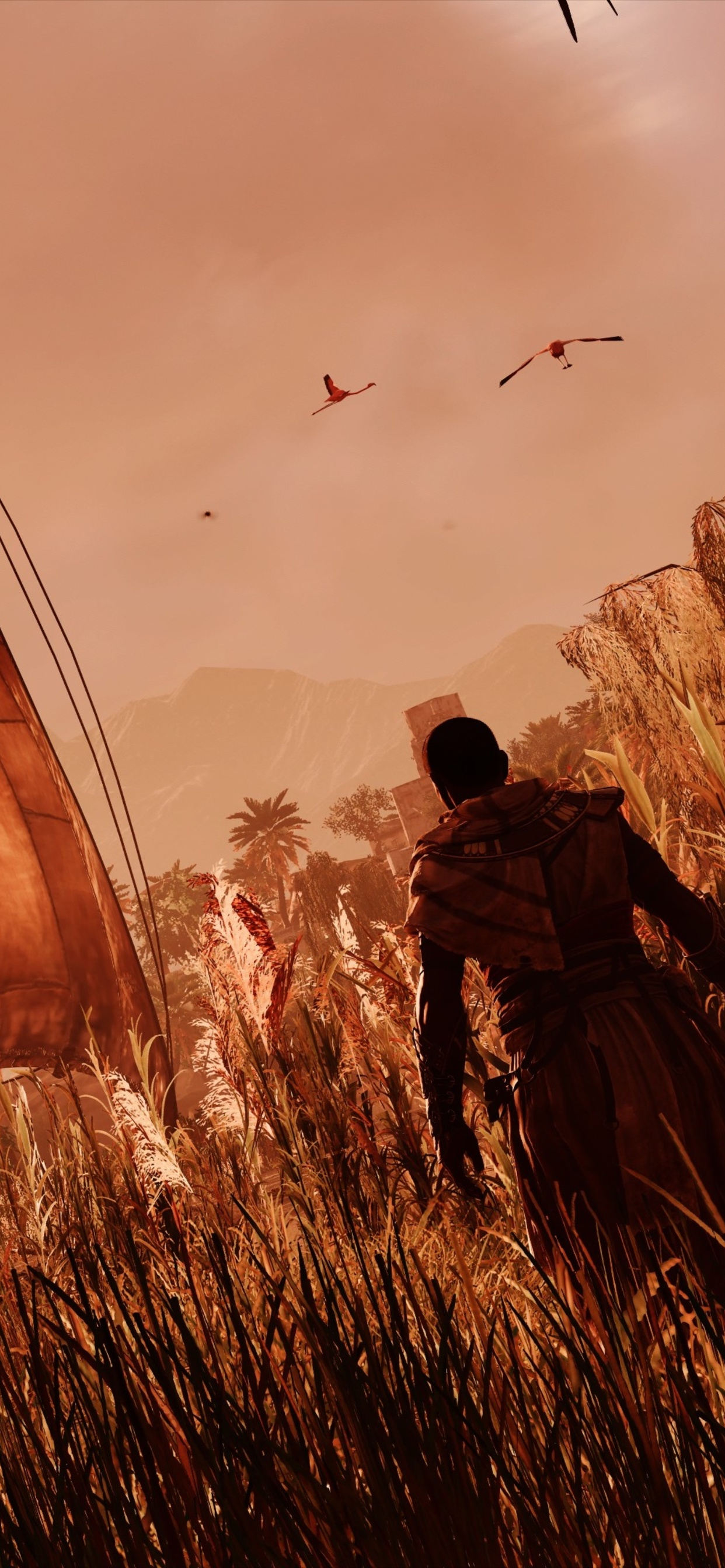 1242x2688 Assassins Creed Origins Egypt 4k Iphone Xs Max Hd