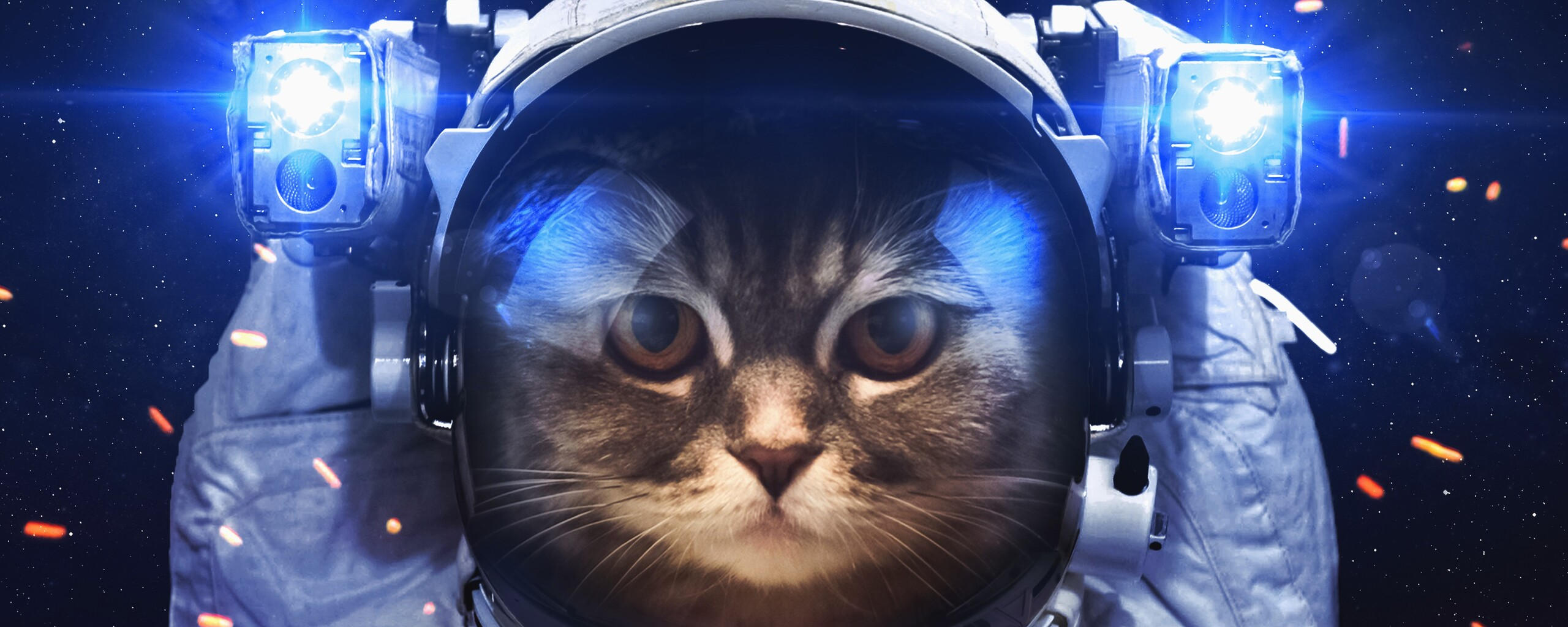 astronaut-cat-fx.jpg