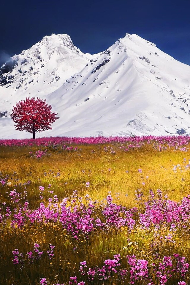 autumn-fields-apls-mountains.jpg