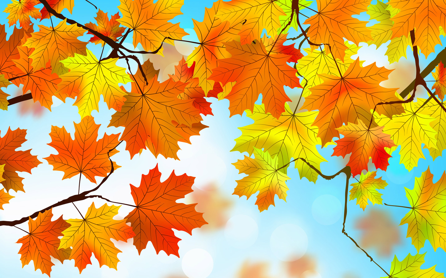 1440x900 Autumn Leaves Hd 1440x900 Resolution Hd 4k