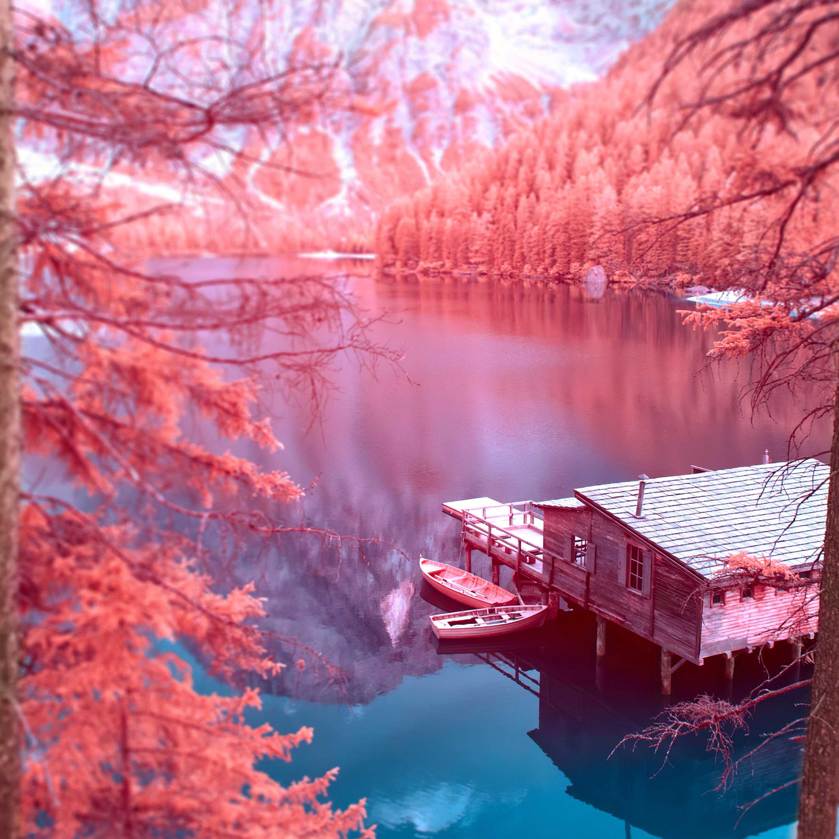 autumn-nature-4k-vn.jpg