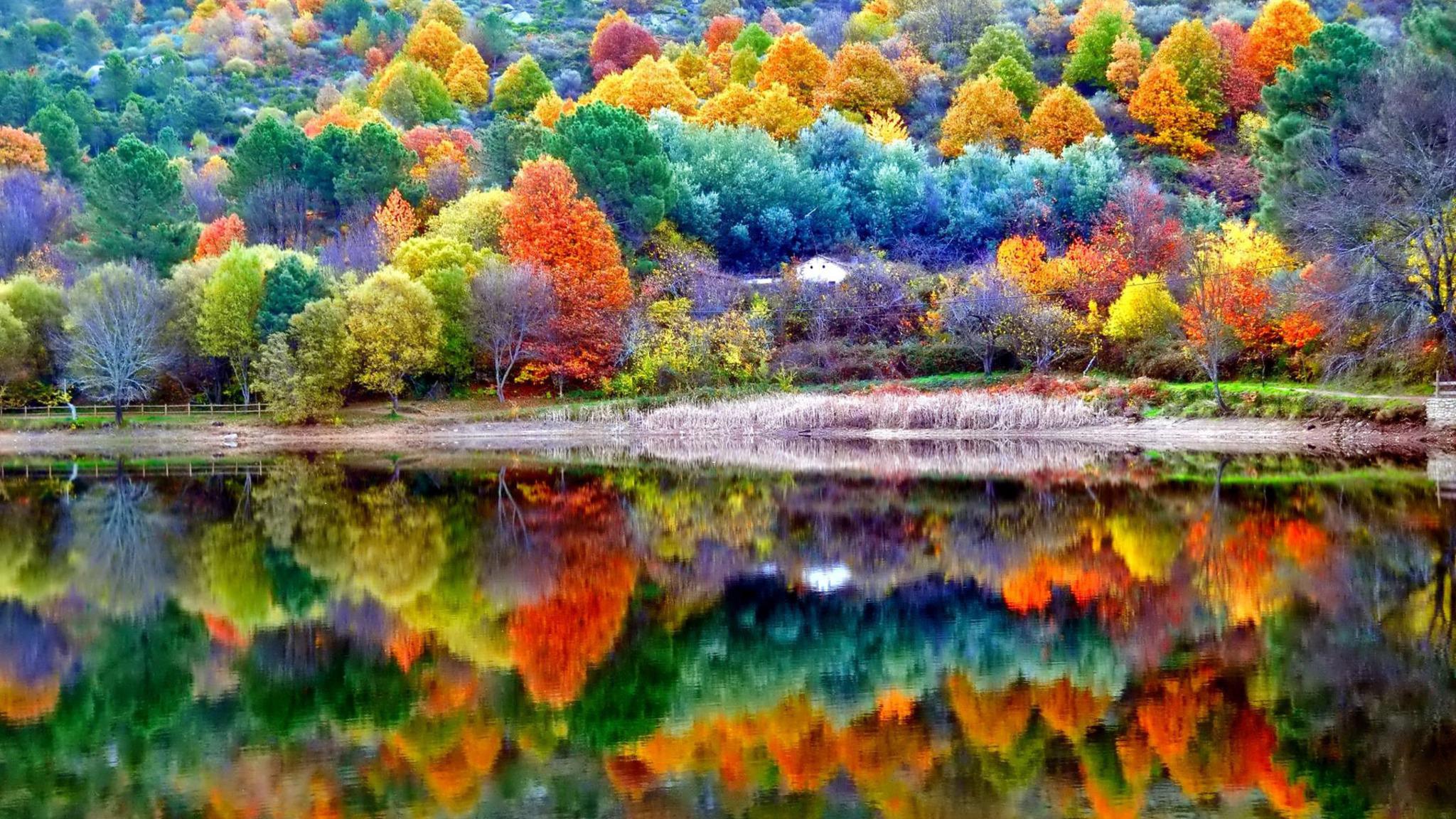 2048x1152 Autumn Scenery 2048x1152 Resolution HD 4k ...