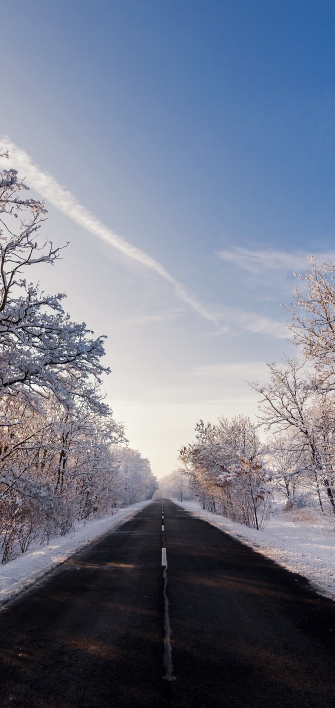 autumn-winter-road-outdoors-yw.jpg