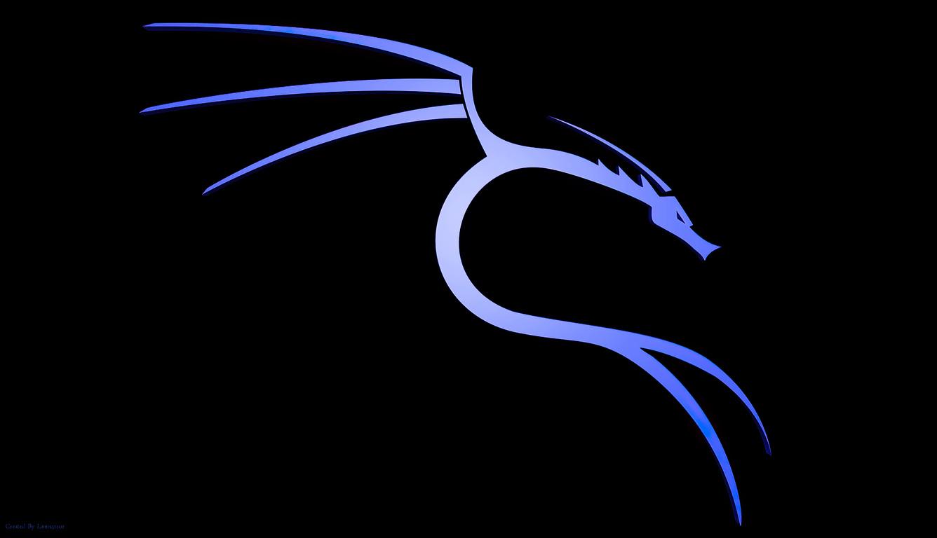 backtrack-linux-h8.jpg