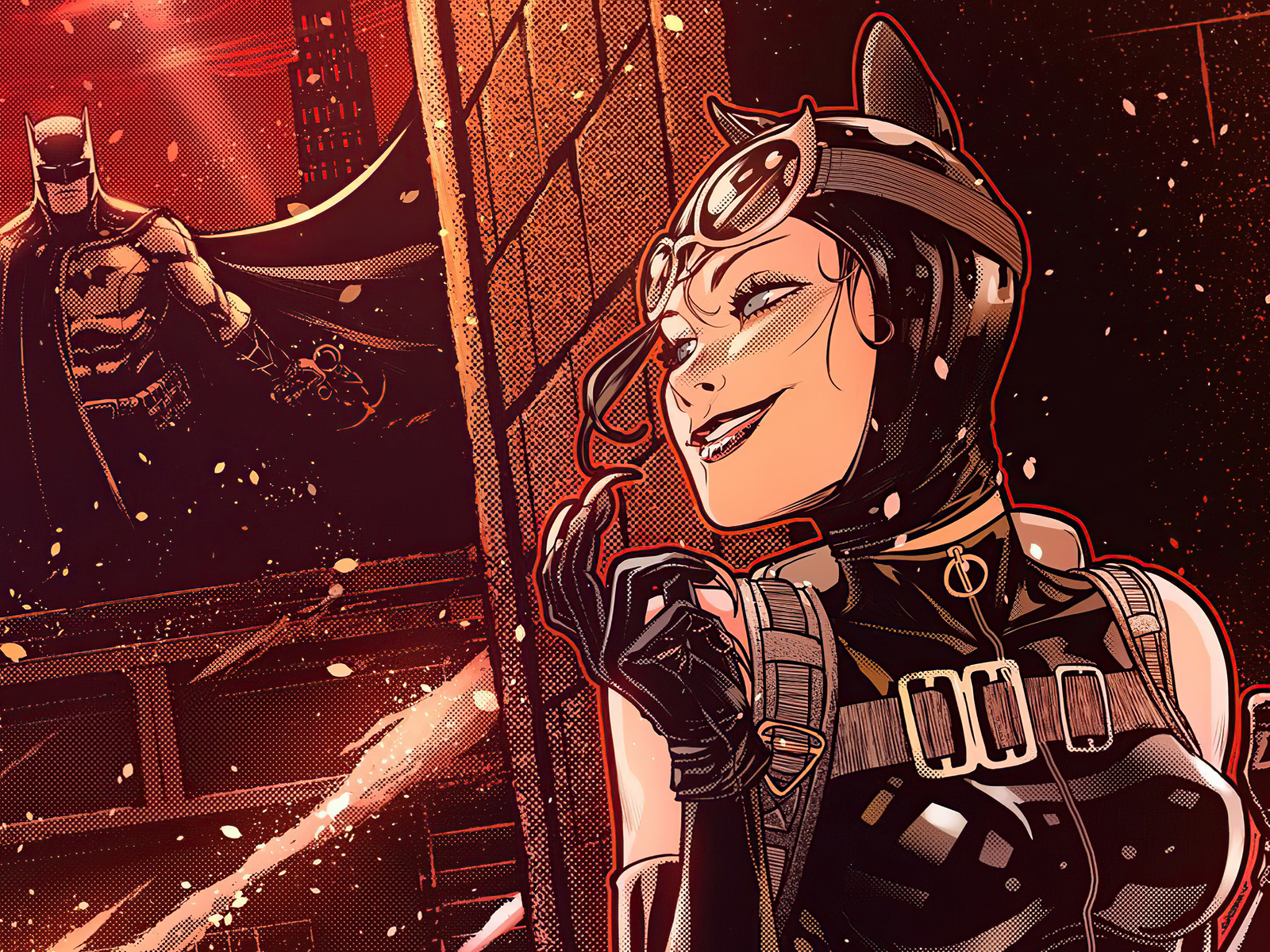 bat-and-cat-1n.jpg