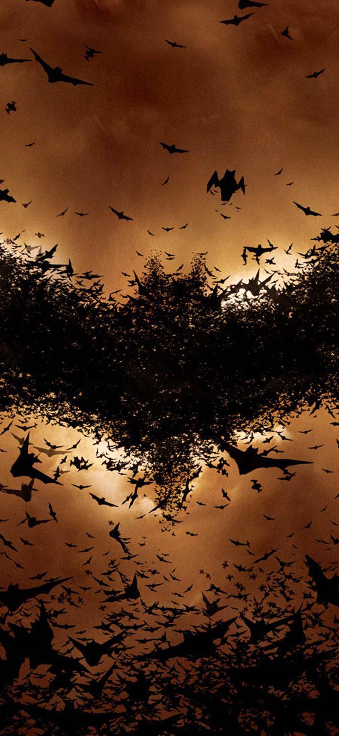 batman-begins-bat-symbol-cy.jpg