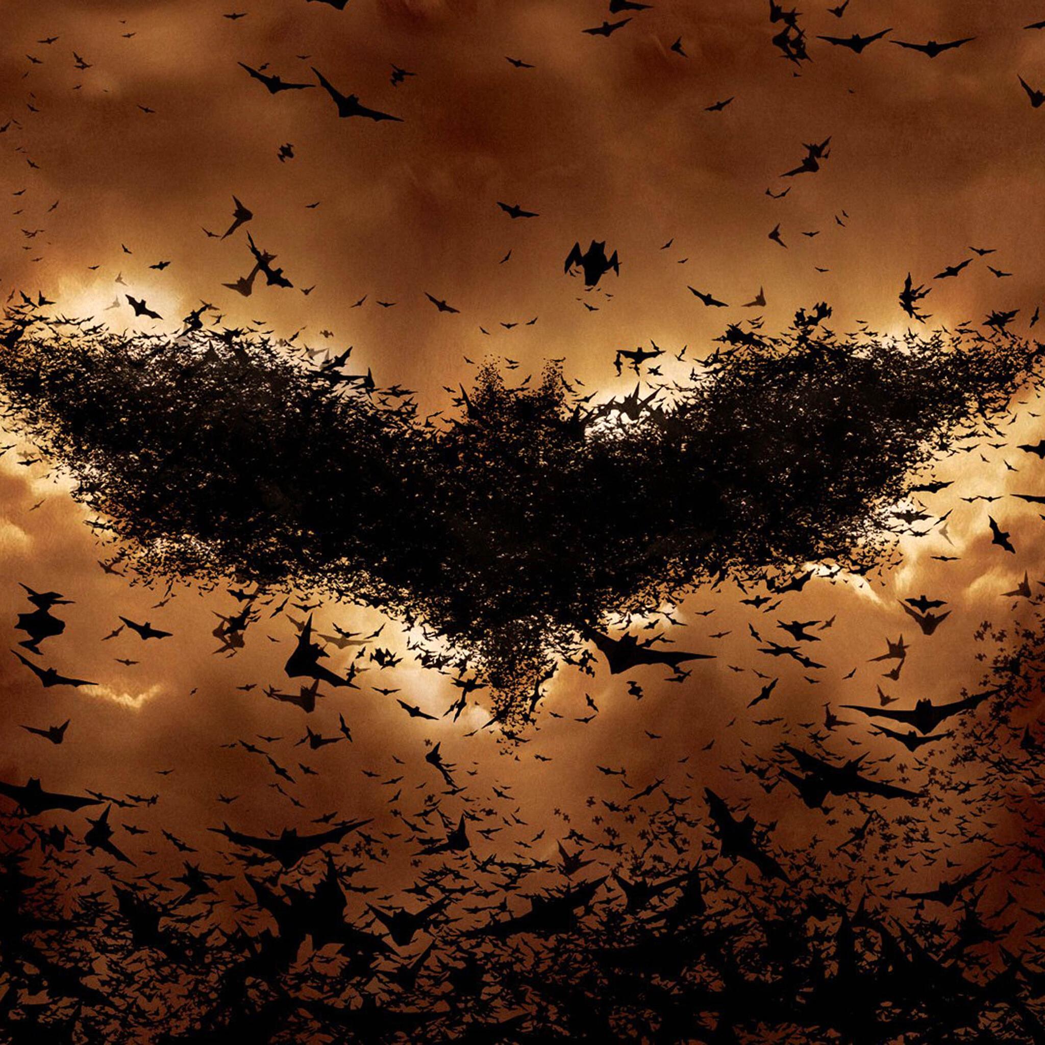 2048x2048 Batman Begins Bat Symbol Ipad Air HD 4k