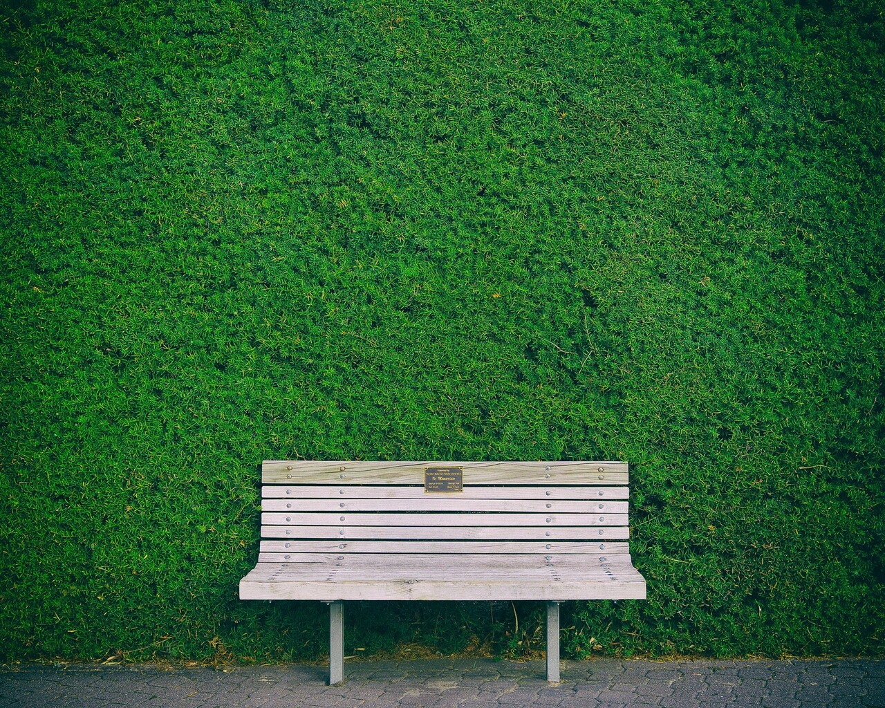 beautiful-bench-in-garden-wide.jpg