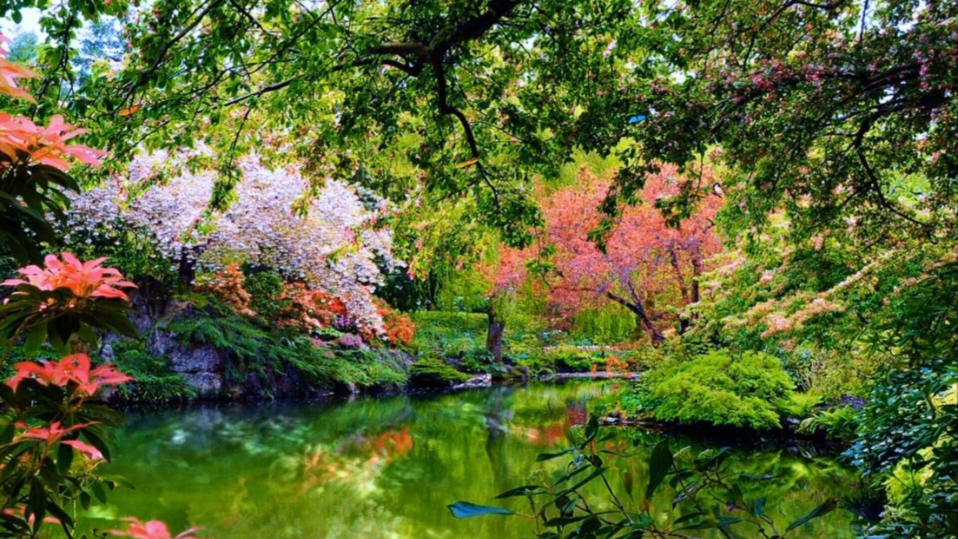 1920x1080 Beautiful Garden Nature Laptop Full Hd 1080p Hd 4k