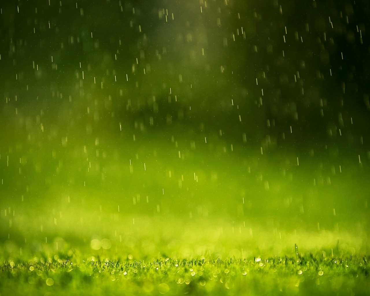 1280x1024 Beautiful Rain Drops 1280x1024 Resolution Hd 4k Wallpapers Images Backgrounds Photos And Pictures