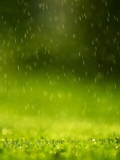 beautiful-rain-drops.jpg