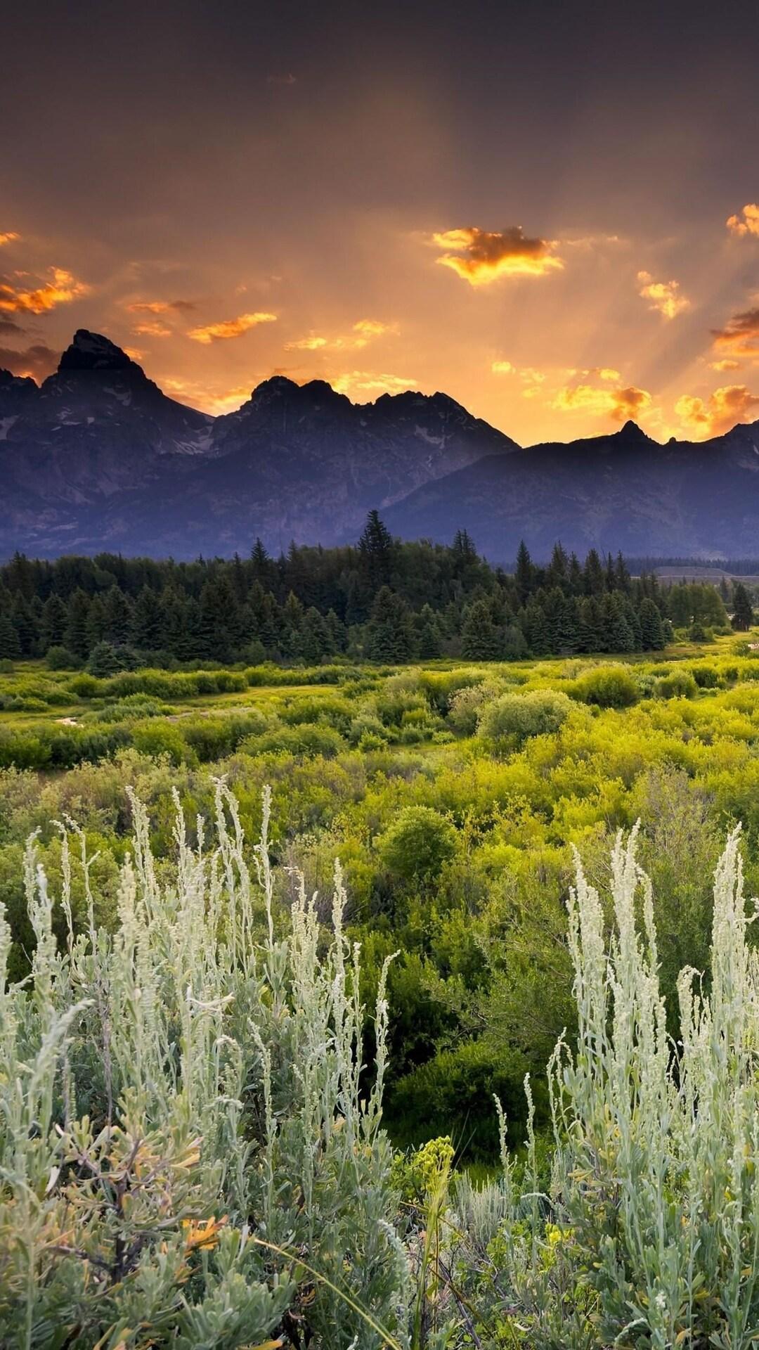 beautiful-scenery.jpg