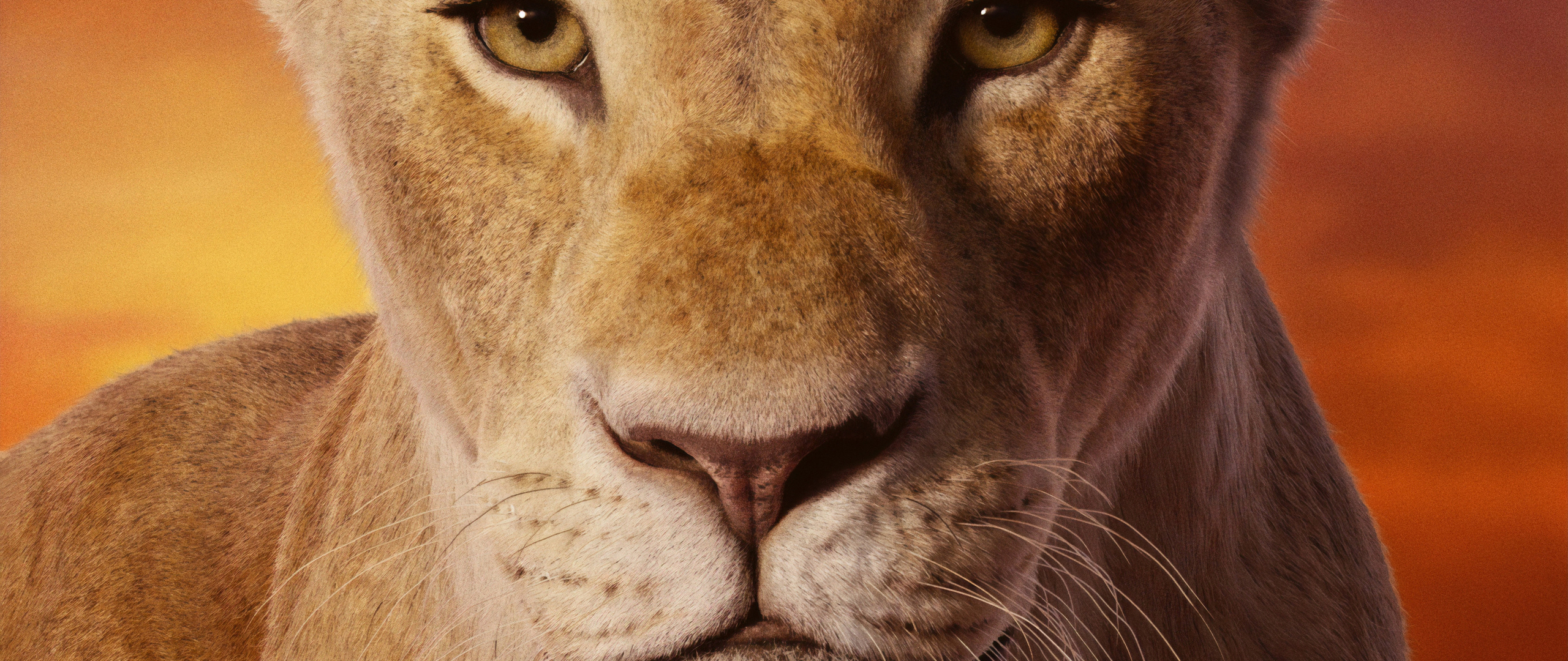 beyonce-as-nala-the-lion-king-2019-4k-gt.jpg