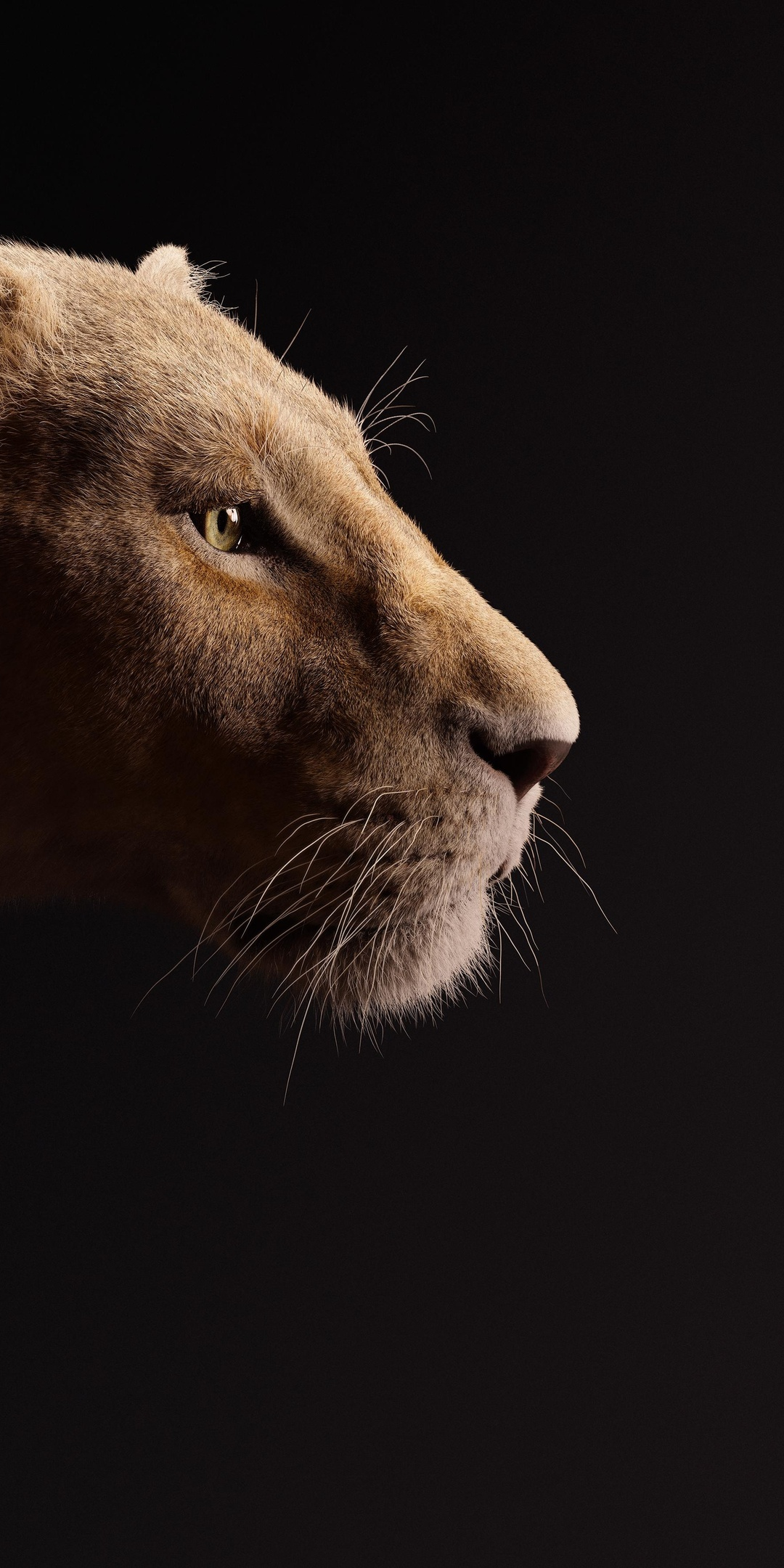beyonce-as-nala-the-lion-king-2019-5k-32.jpg