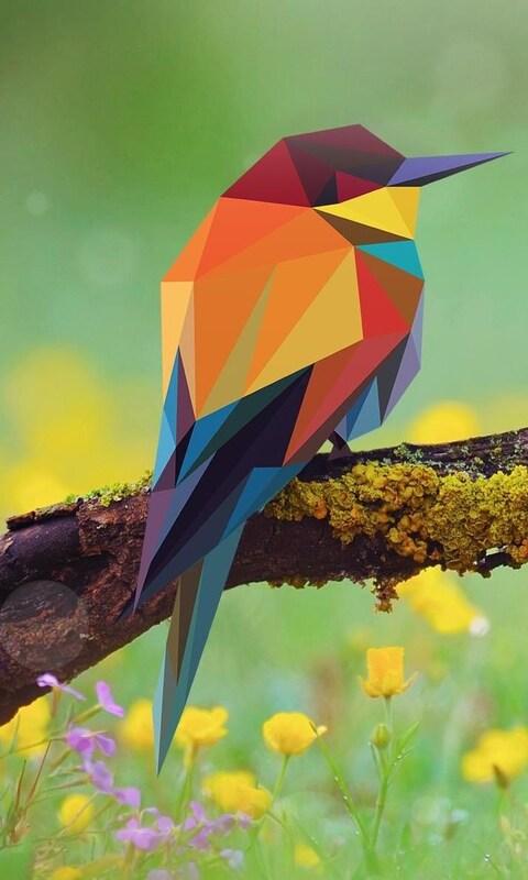 bird-abstract-art-pic.jpg