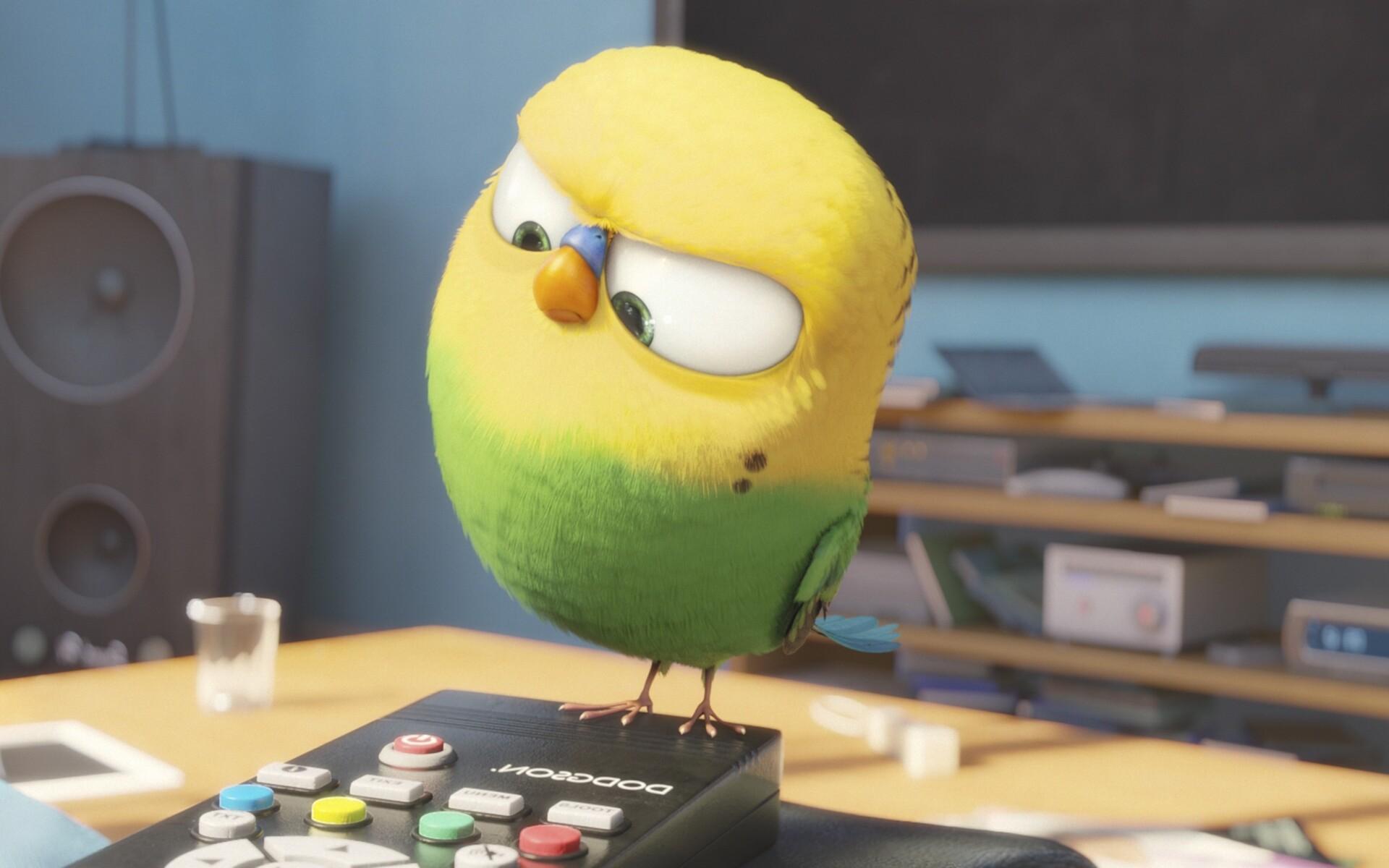 bird-secrete-life-of-pets.jpg