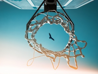 bird-view-from-basketball-ring-9f.jpg