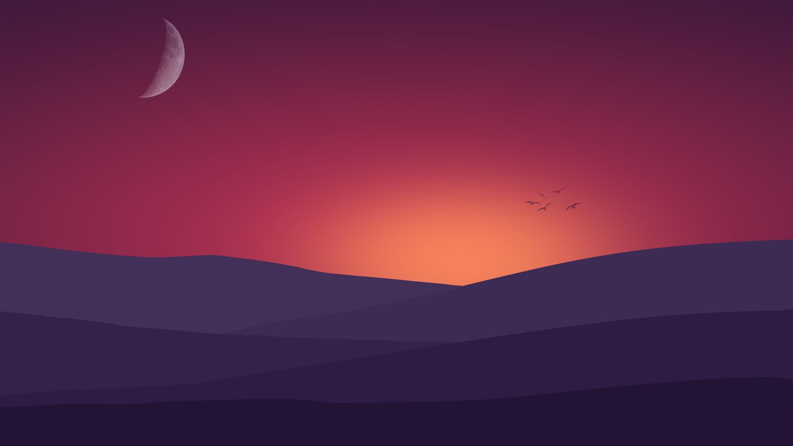 birds-flying-towards-sunset-landscape-minimalist-4k-et.jpg