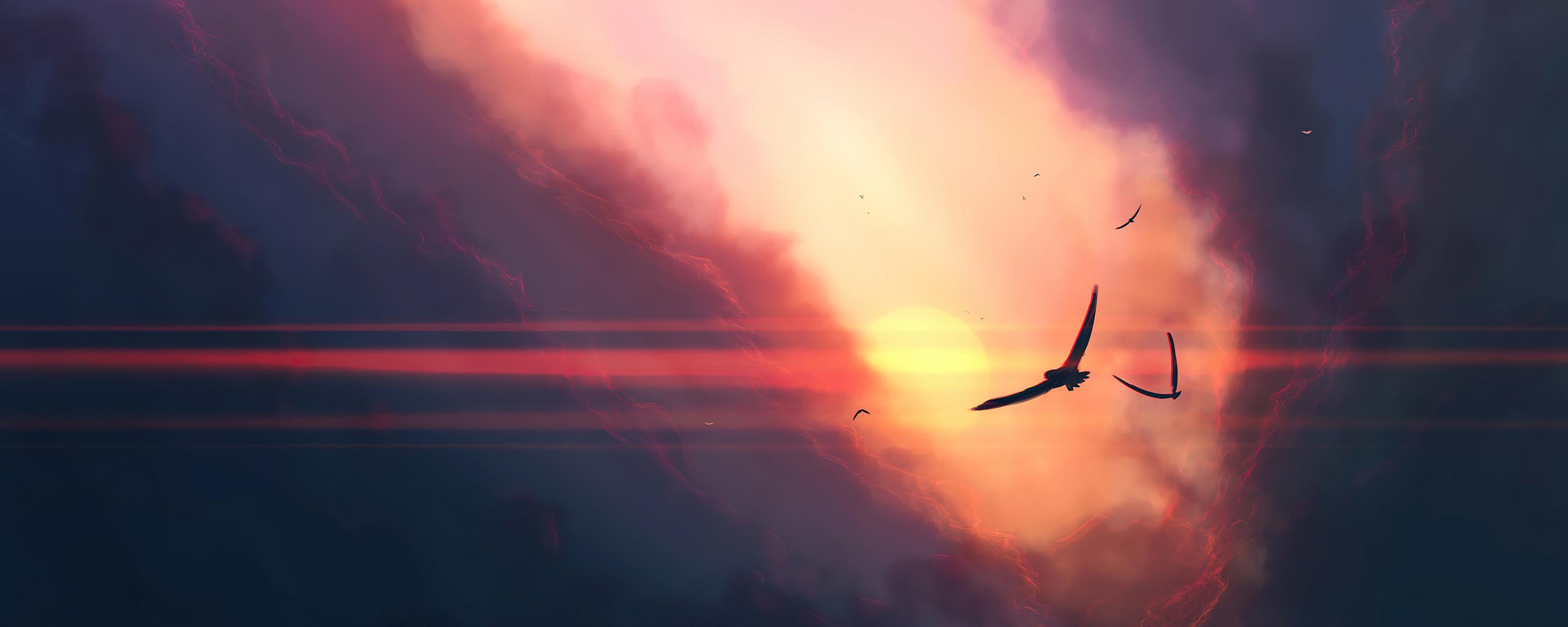 birds-sunset-clouds-4k-j0.jpg
