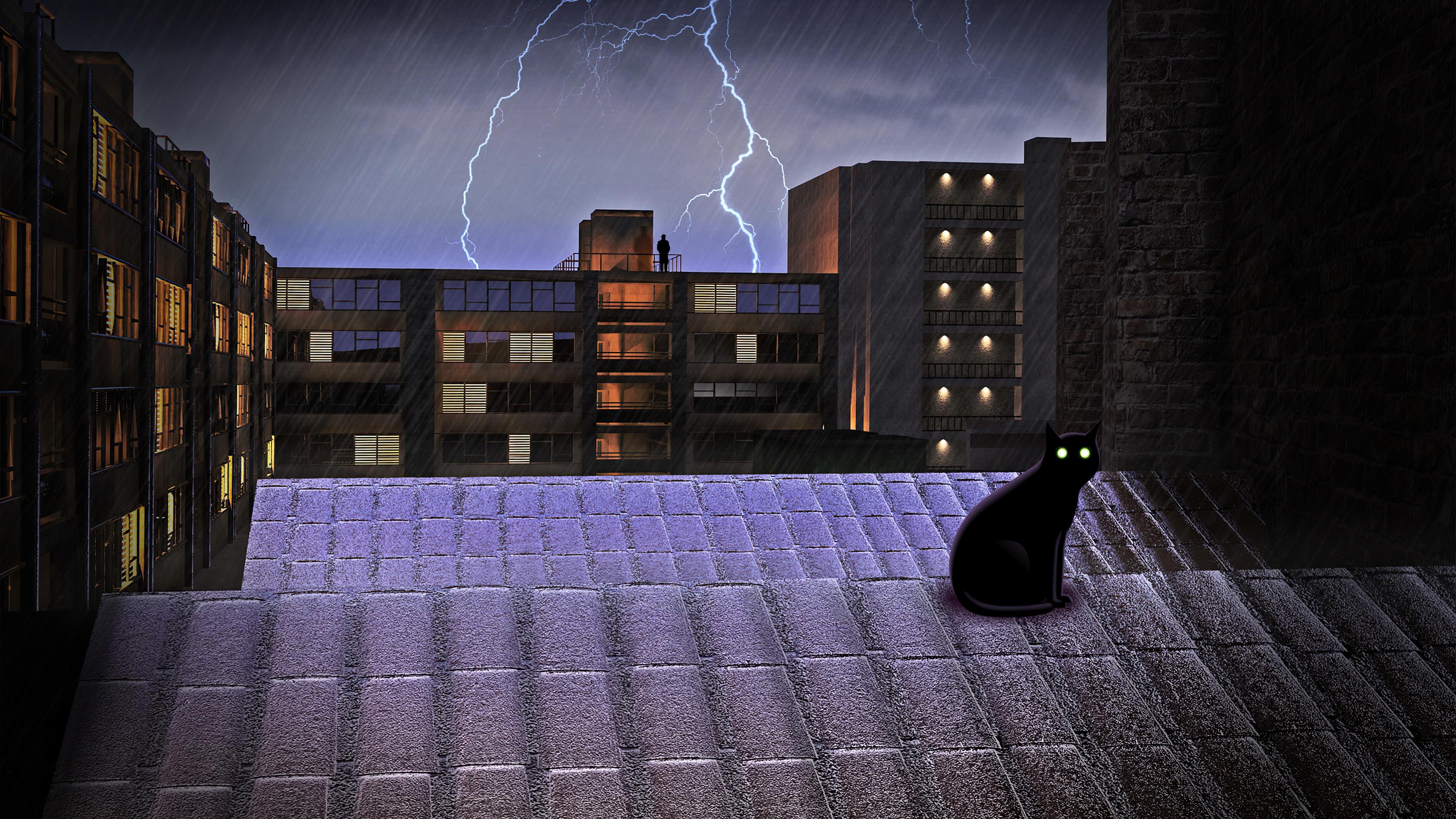 black-cat-on-rooftop-lightning-4k-kp.jpg