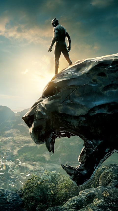 480x854 Black Panther 2017 8k Android One Hd 4k Wallpapers